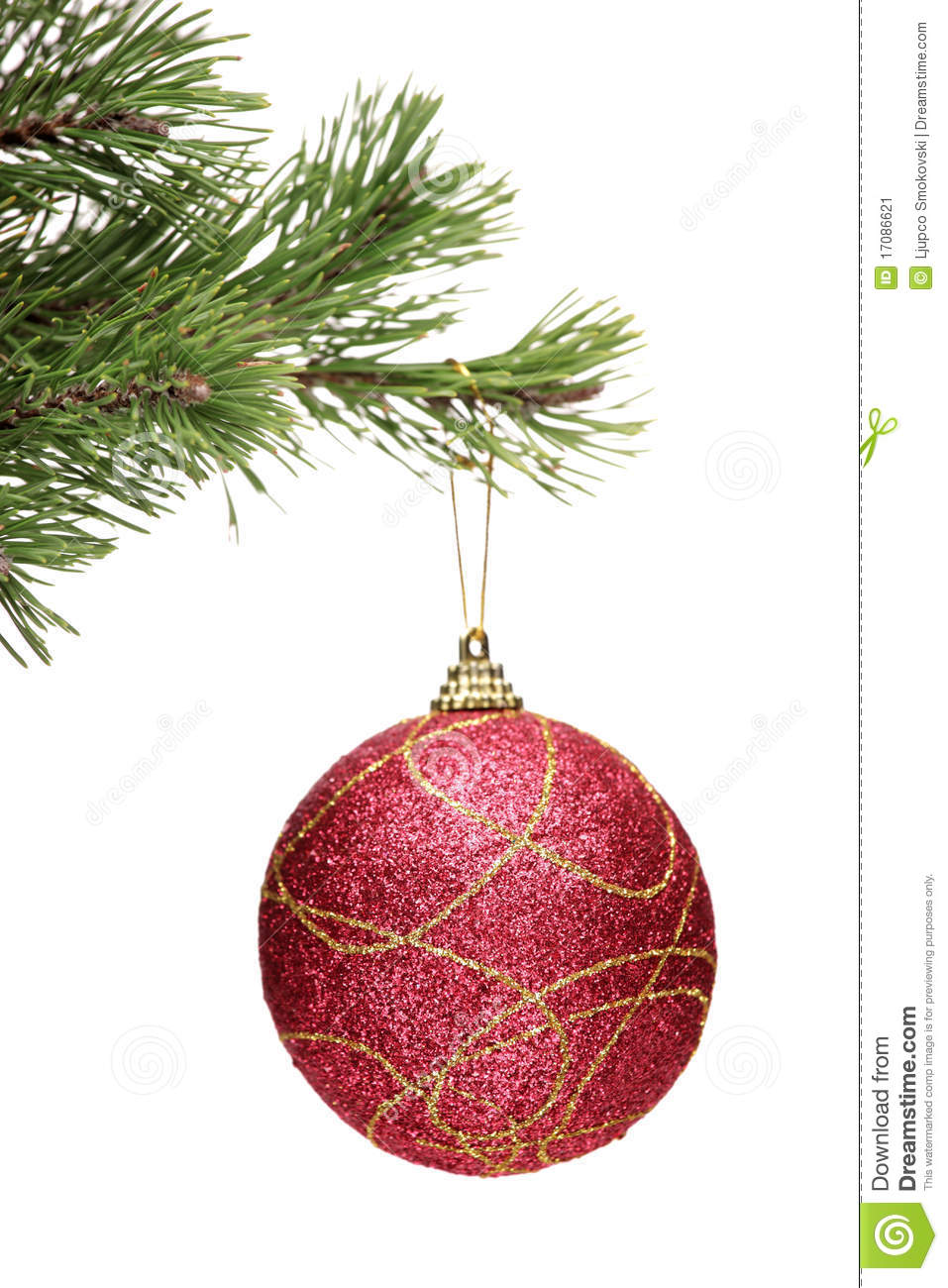 Red ball hanging on a christmas tree branch stock image