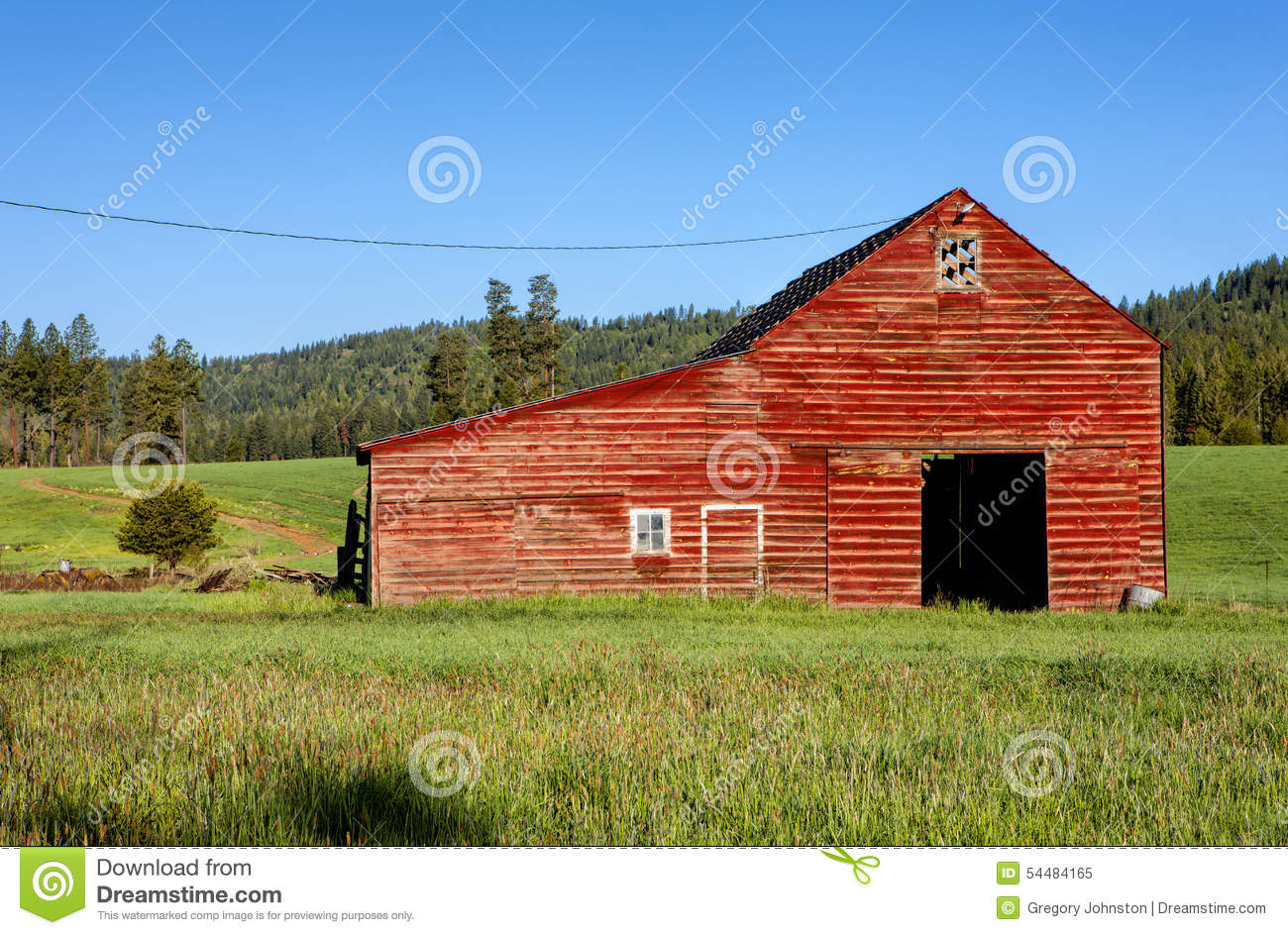 Cow on green pasture with red barn with grain silo royalty free stock - Red Barn Green Grass