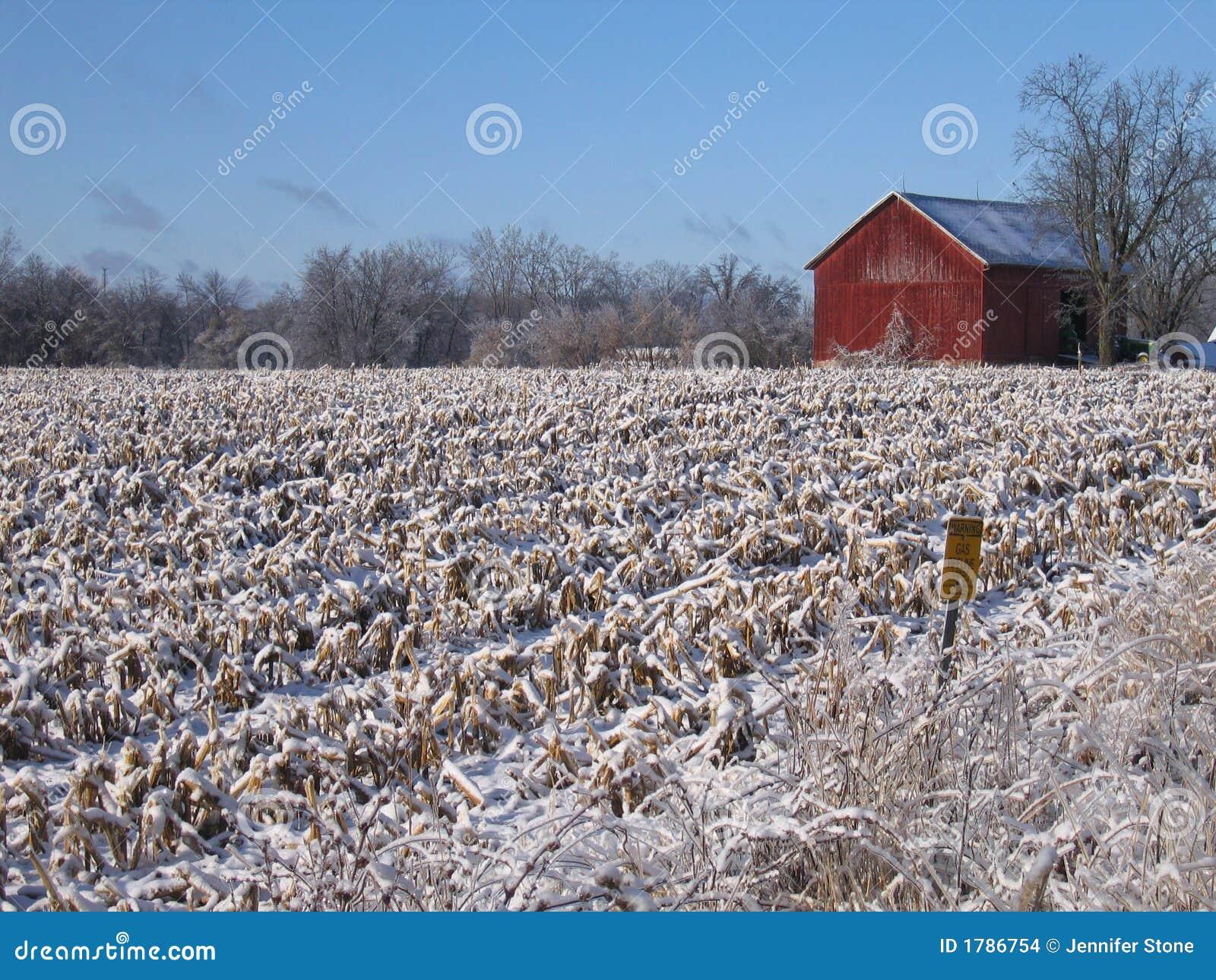 Red Barn in Snowy Field