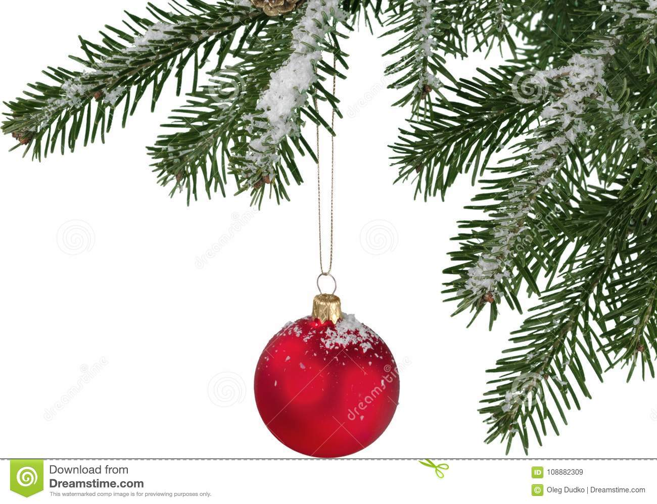 Red bauble on green christmas fir tree