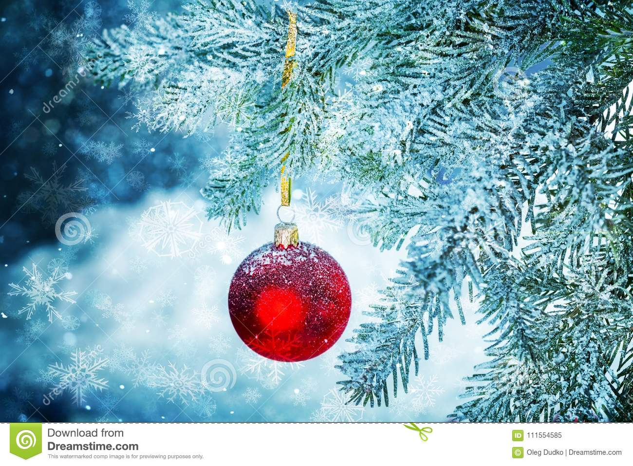 Red bauble on green christmas fir tree on