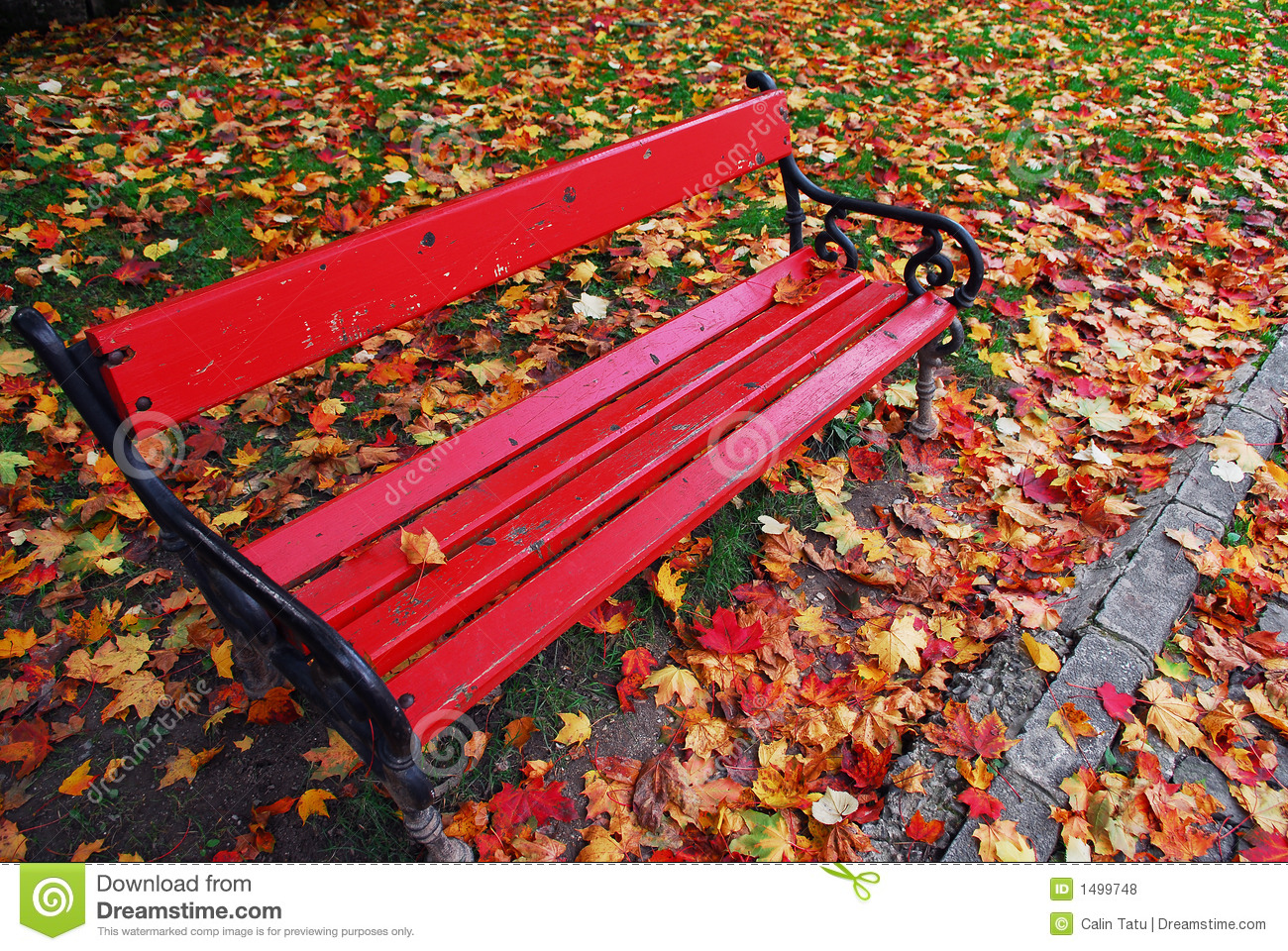 Red Bench In The Park Stock Photo Image Of Fall Lonely