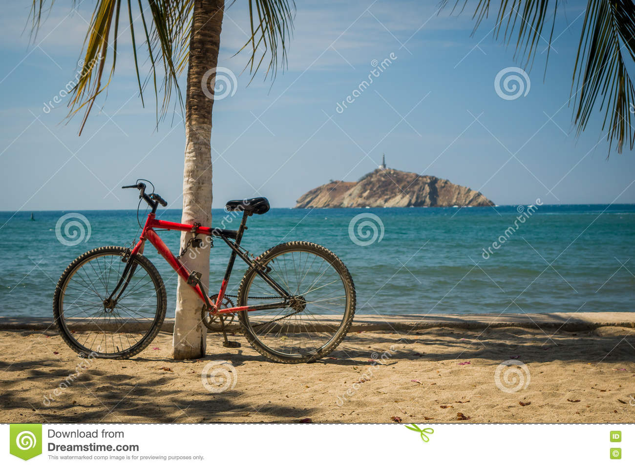red bicycle leaning on palm tree in the beach stock photo image of