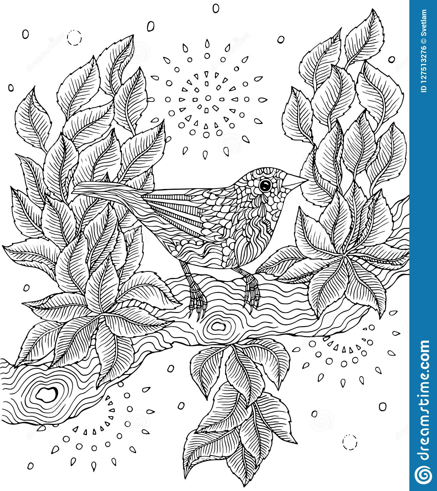 red billed fincher bird coloring page red billed fincher bird coloring page vector illustration