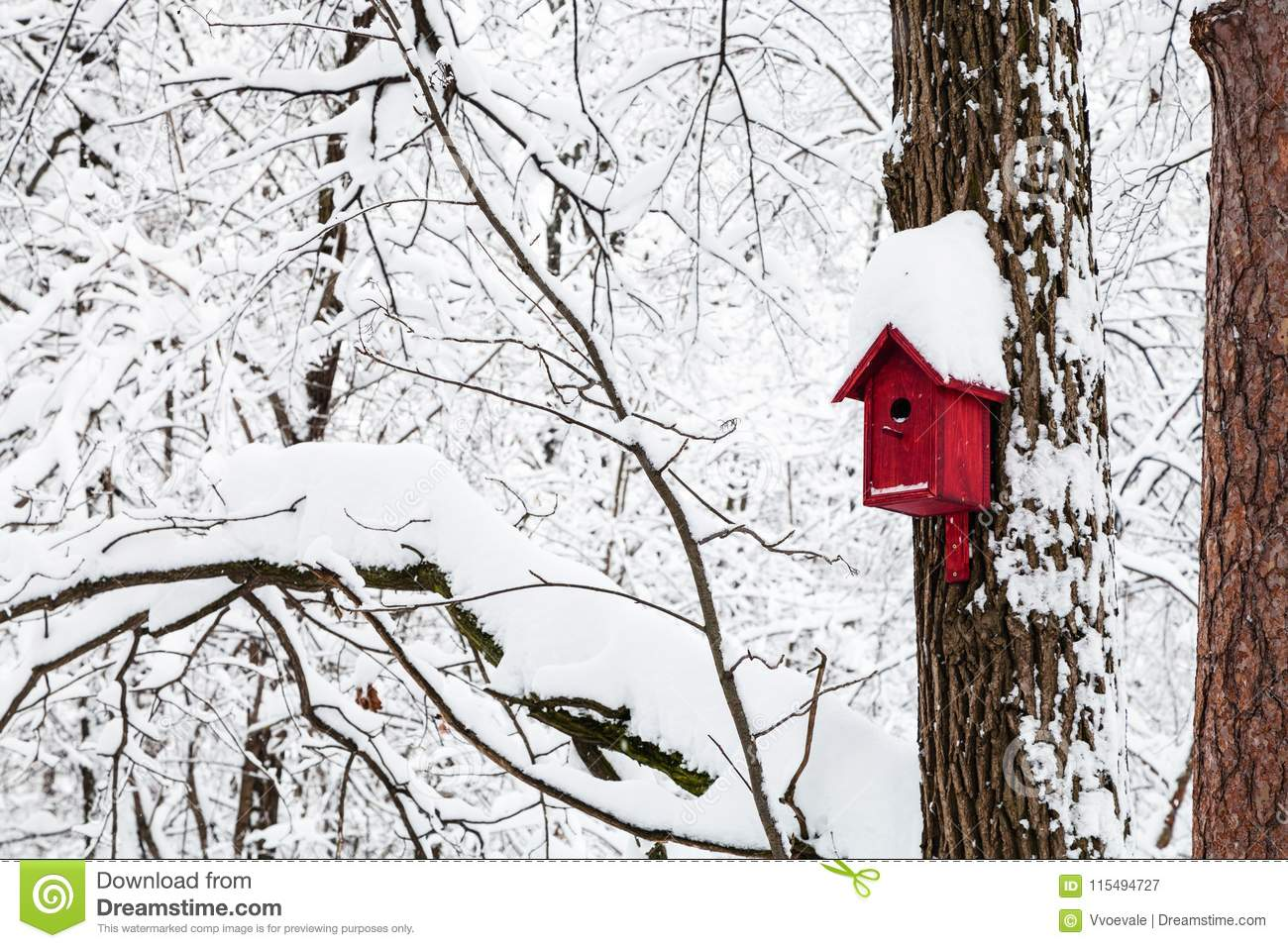 red bird house in winter forest