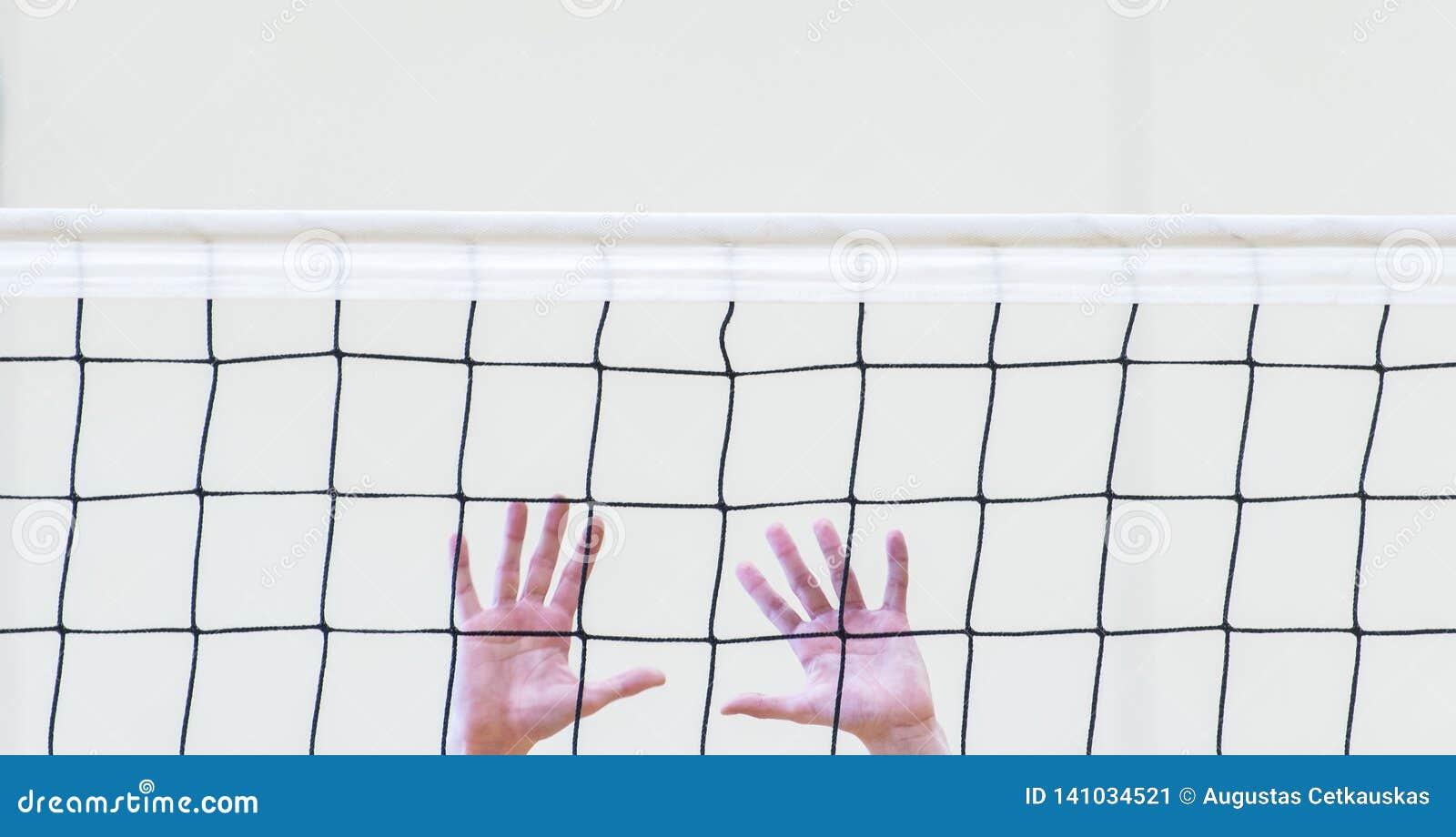 Red blanca del voleibol con las manos del hombre Deporte de personas