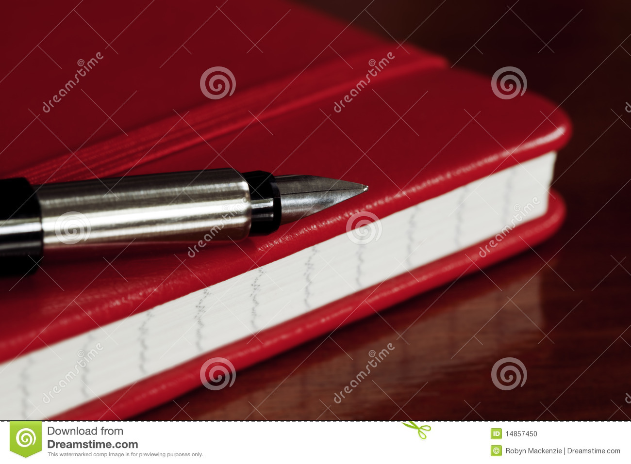 Red Book and Fountain Pen