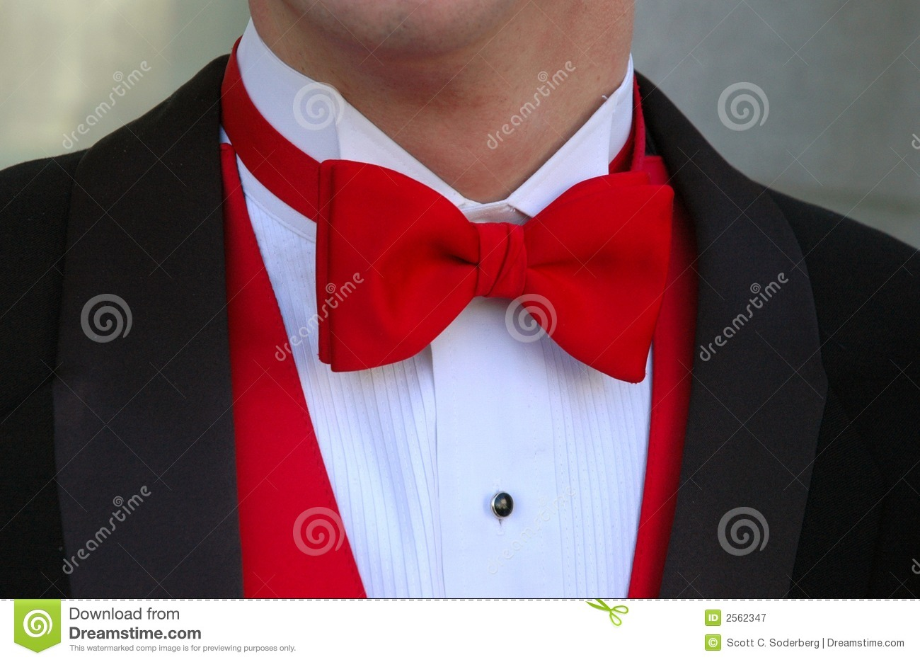 8e763869 Detail of man's upper torso dressed in formal attire wearing red bow tie  with red vest