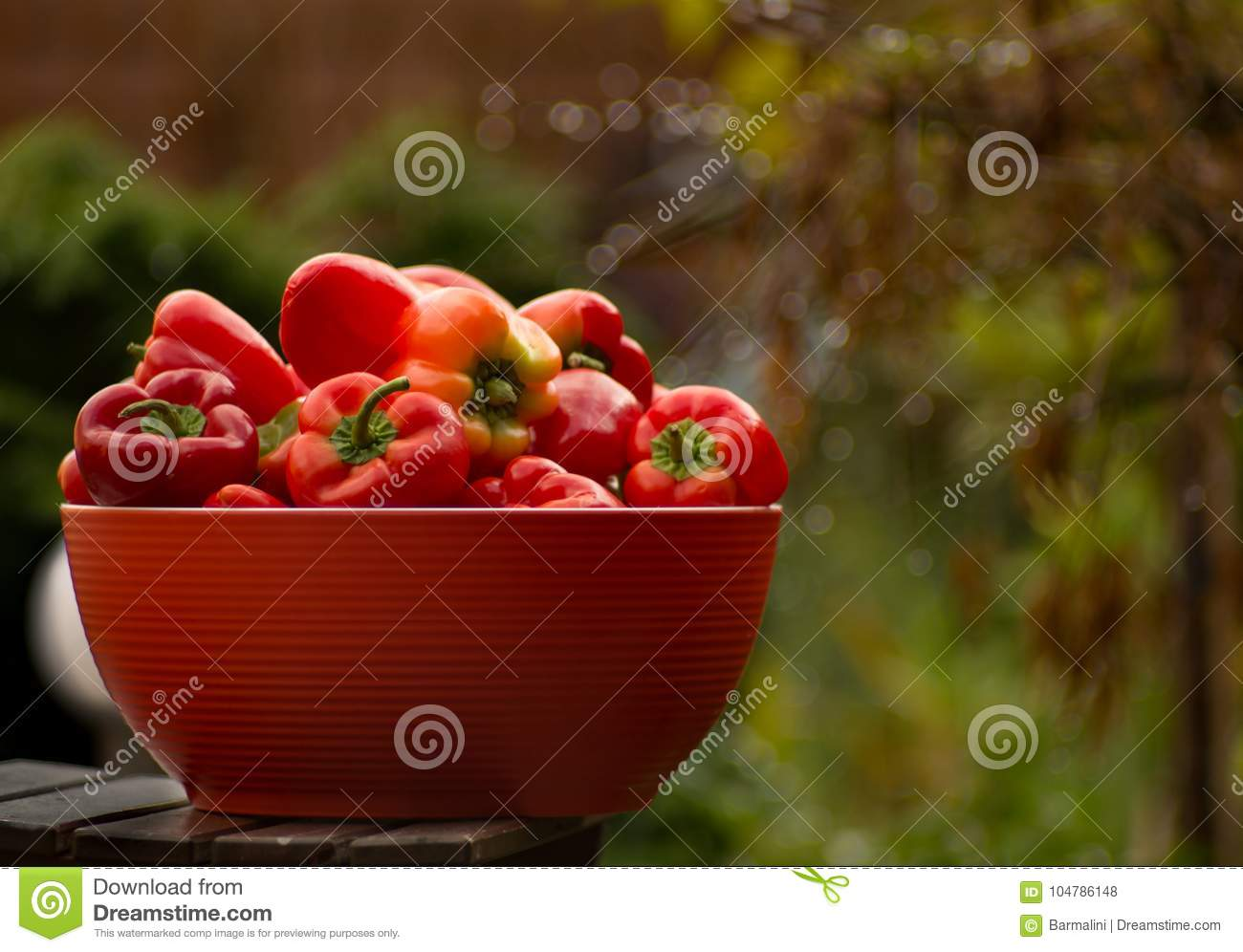 Red Bowl With Fresh Ripe Red Sweet Paprika In Garden Stock Photo ...
