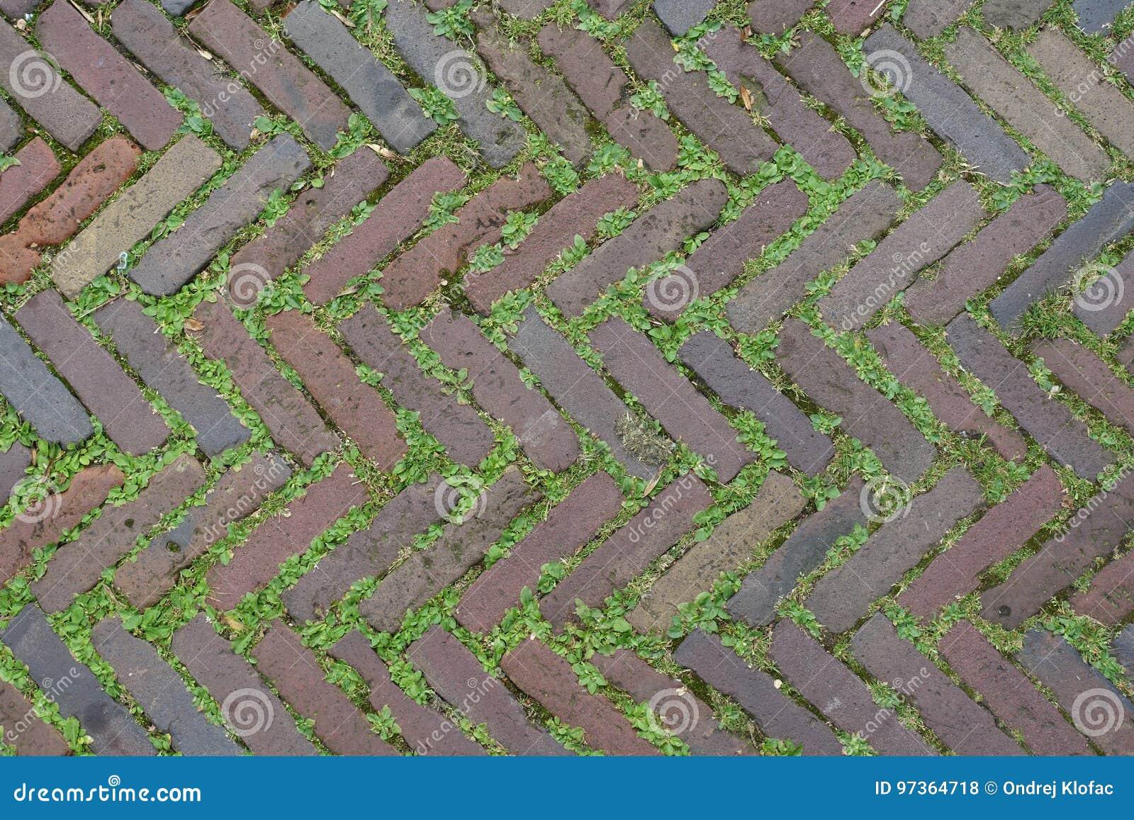 Red Brick Street Road Paving Arranged Across Herringbone Background