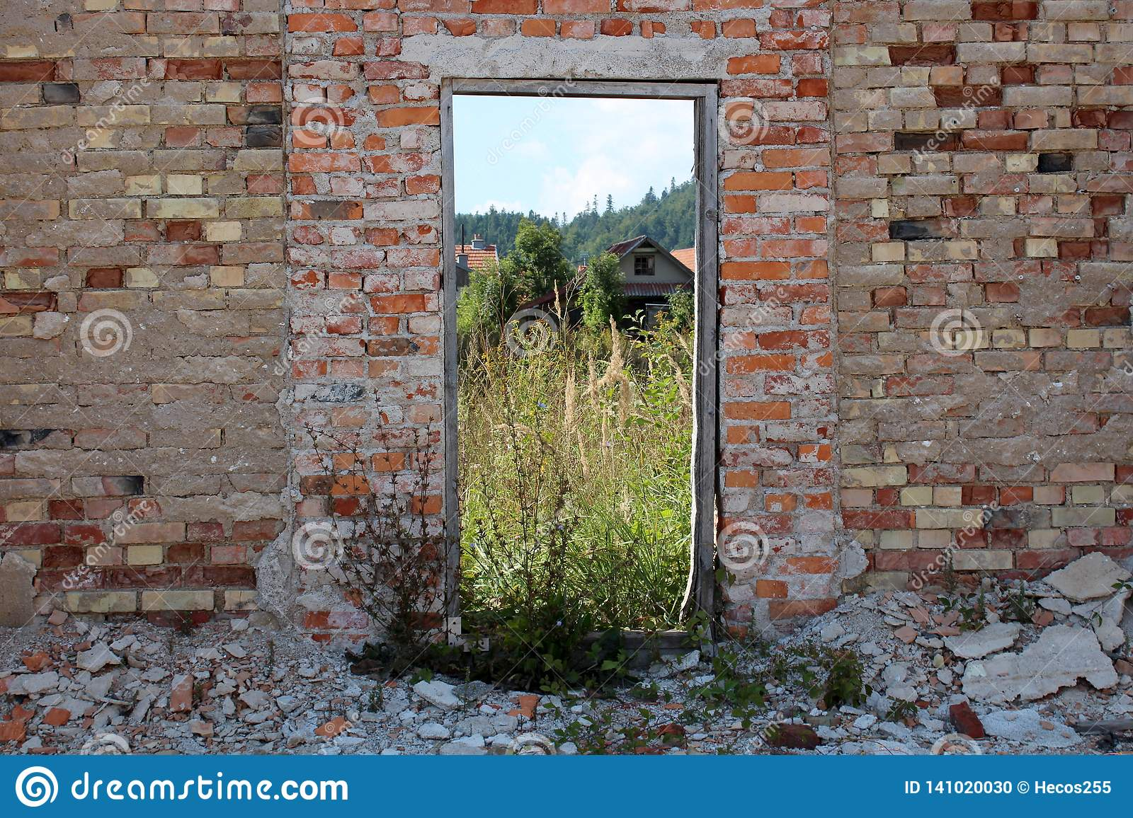 Red brick wall of house ruins with wooden frame instead of wooden doors now serving as picture frame for houses and tall grass