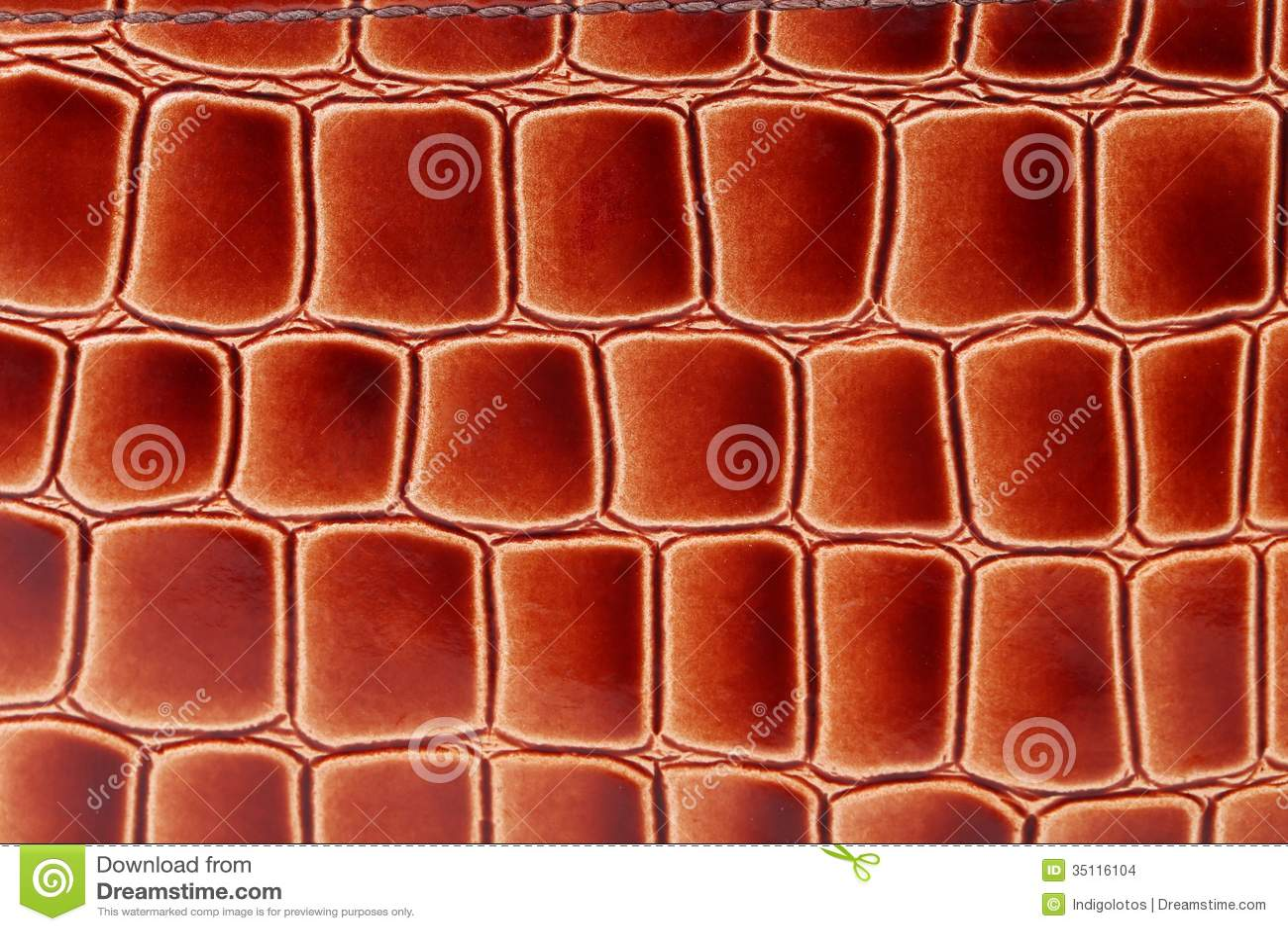 Red brown color of crocodile skin.