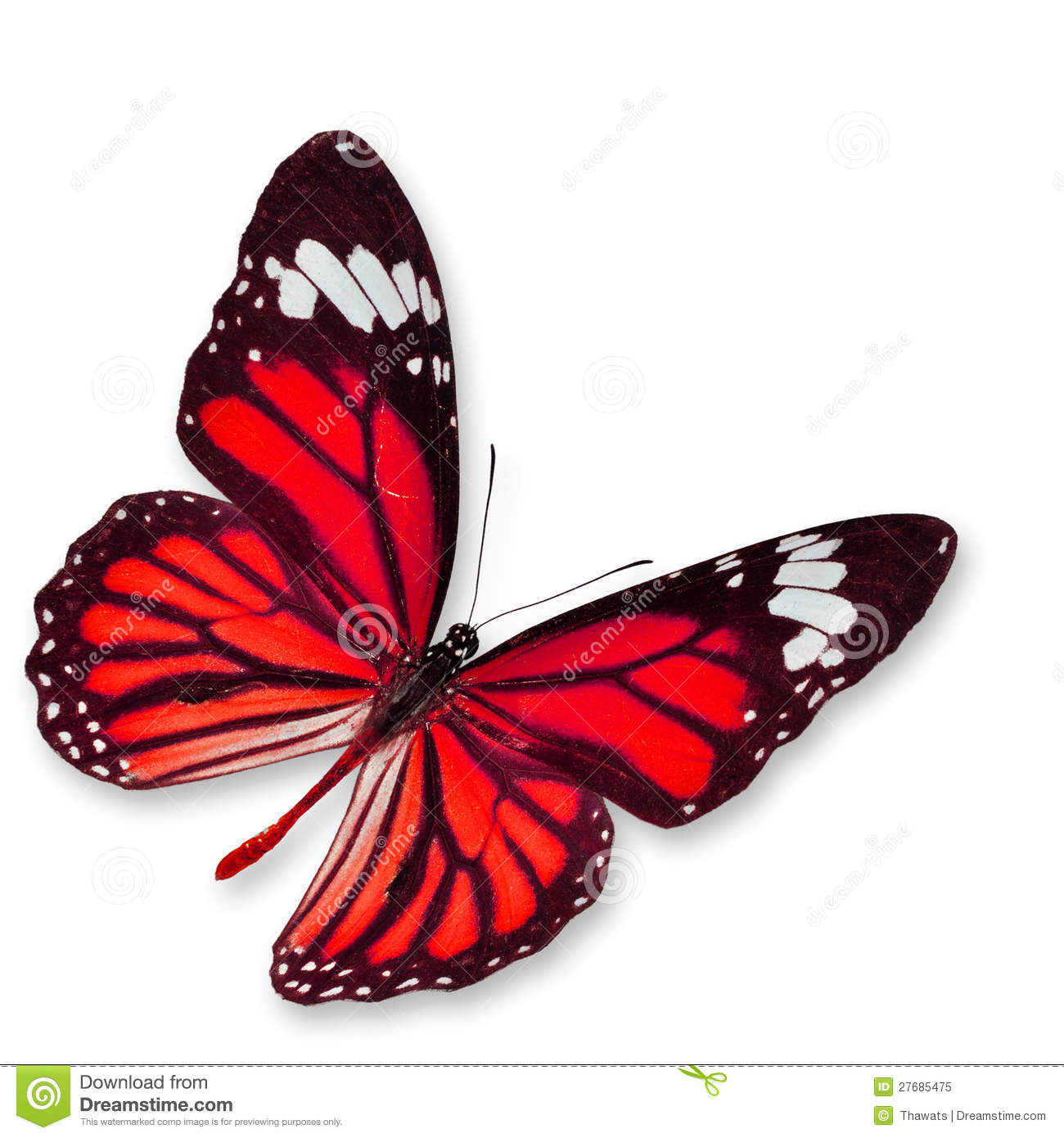 Red butterfly background - photo#20