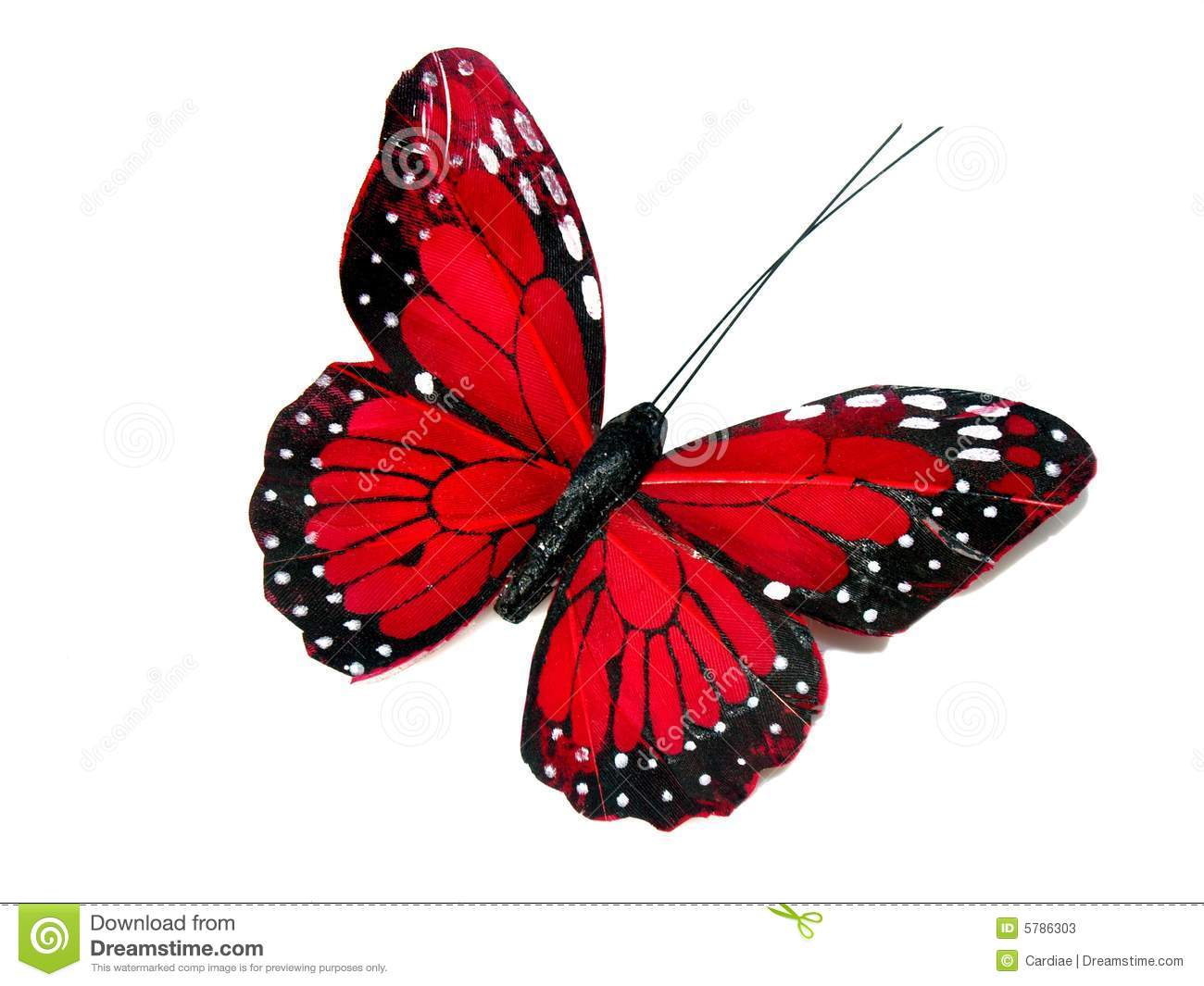 Red butterfly stock image. Image of garden, colorful ...