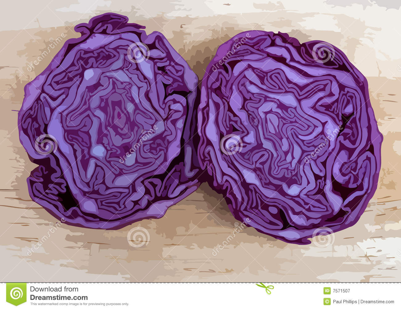 how to cut red cabbage