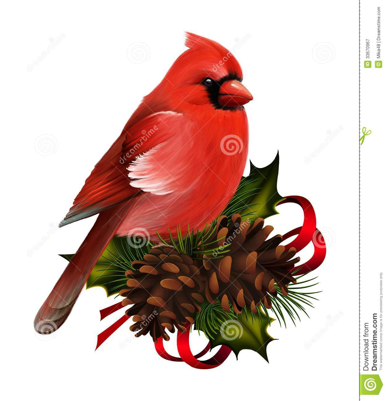 Christmas Decorations Red Birds : Red cardinal royalty free stock photography image