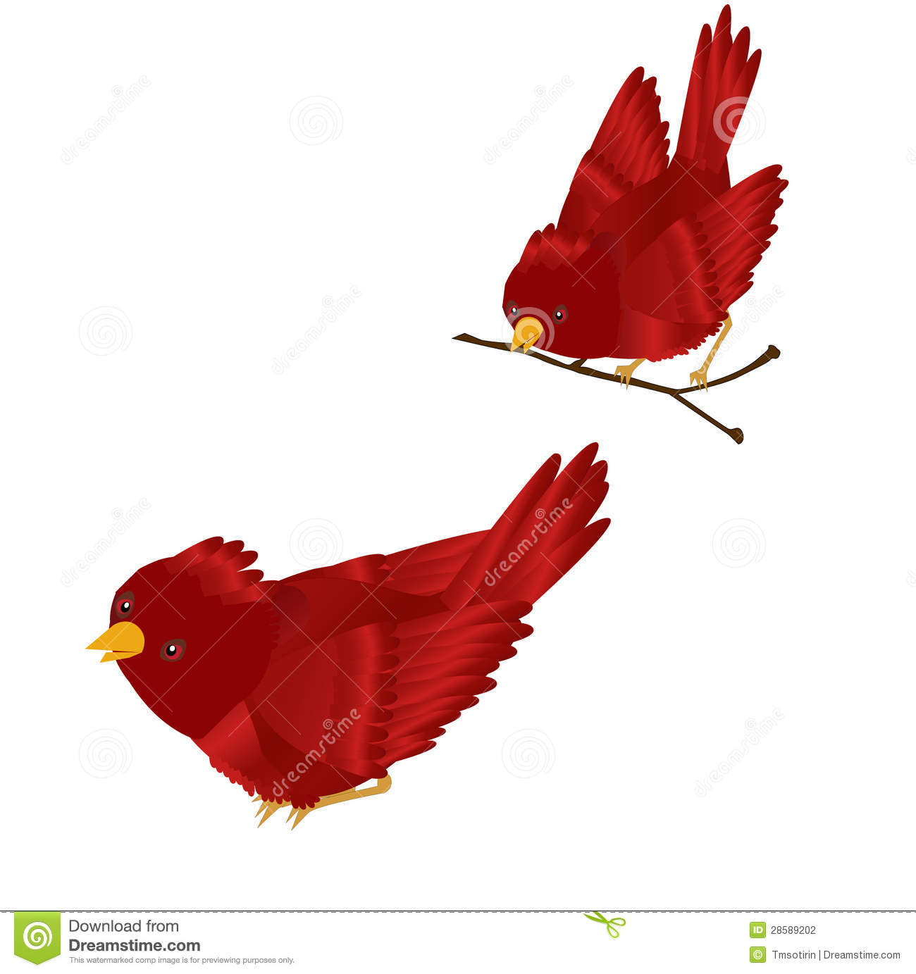 Red Cardinal Clipart Stock Photography - Image: 28589202