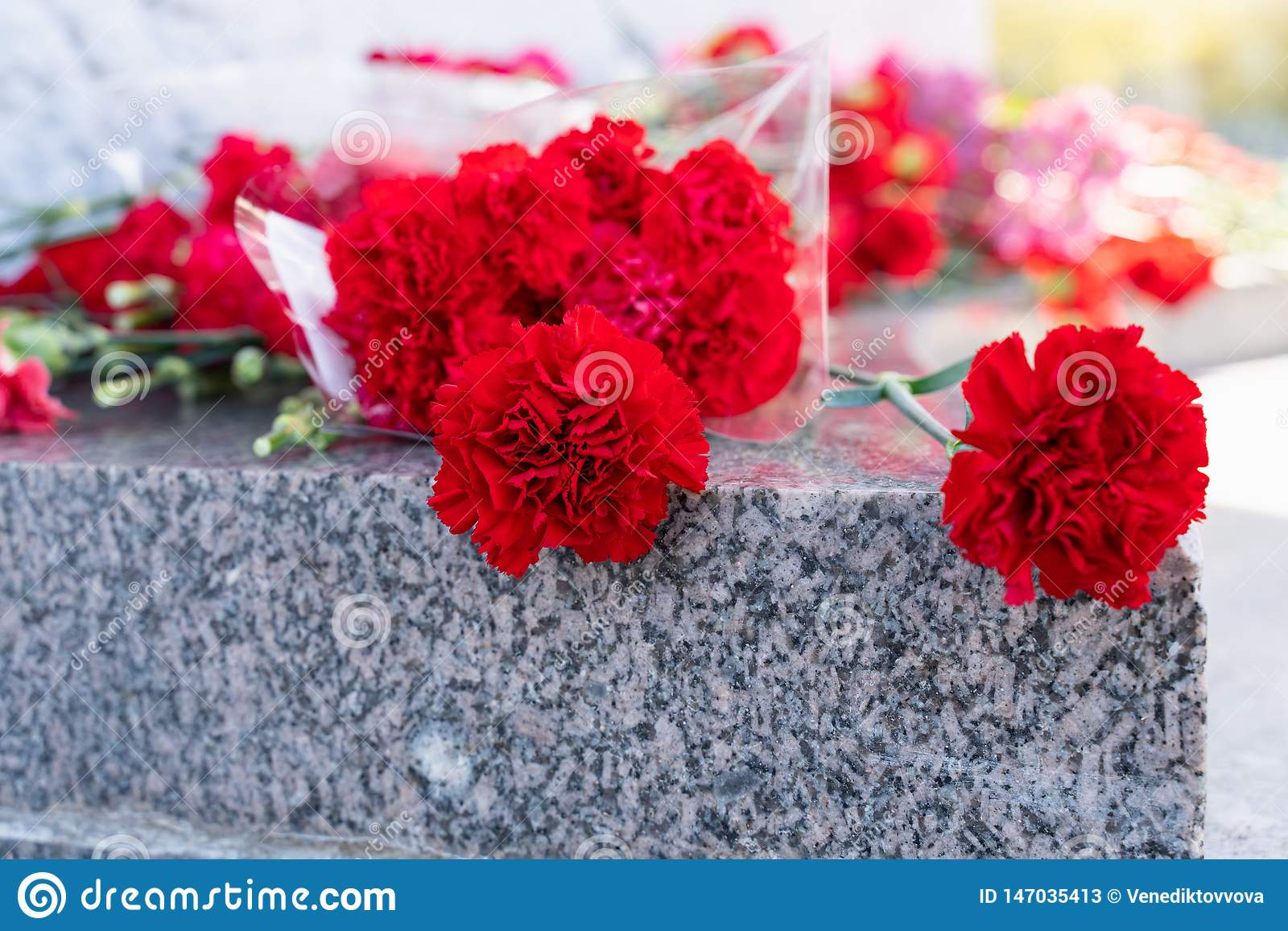 Red carnation flowers at the memorial to fallen soldiers in the world war II