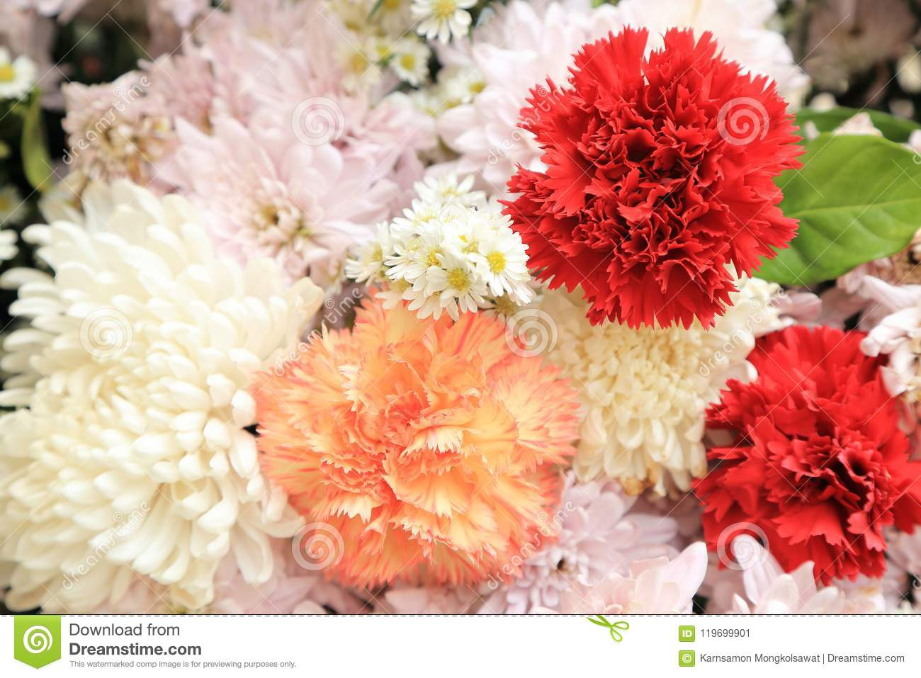 Red Carnation In Pink And White Flowers Bouquet Stock Image Image