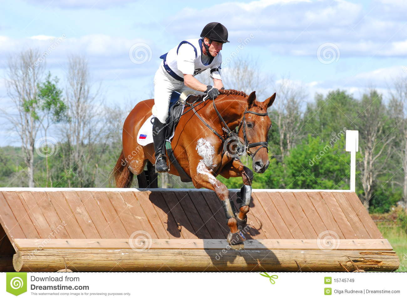 Red Chestnut Horse Jumping Editorial Stock Image Image Of Courage 15745749