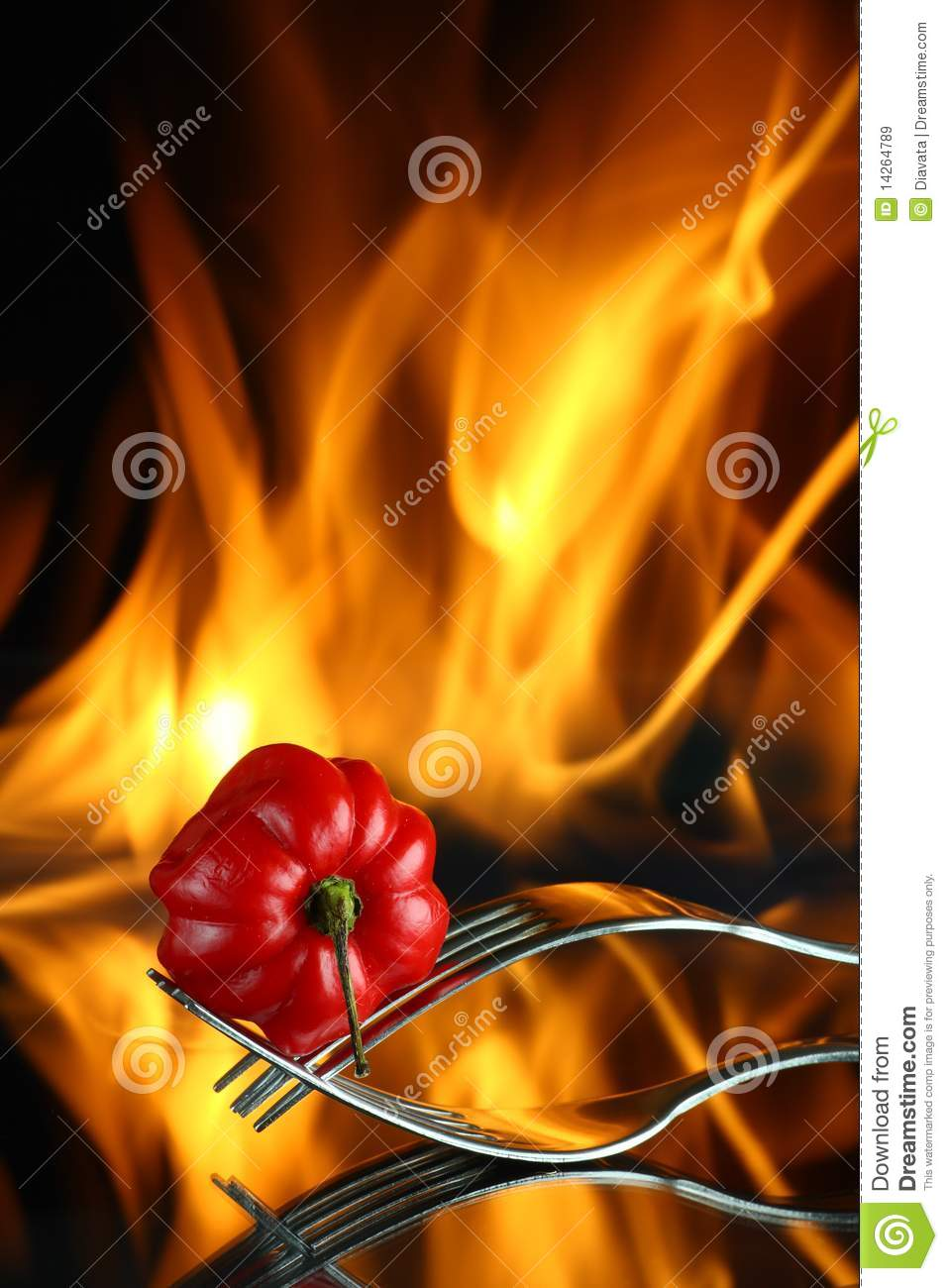 Red chili pepper with fire