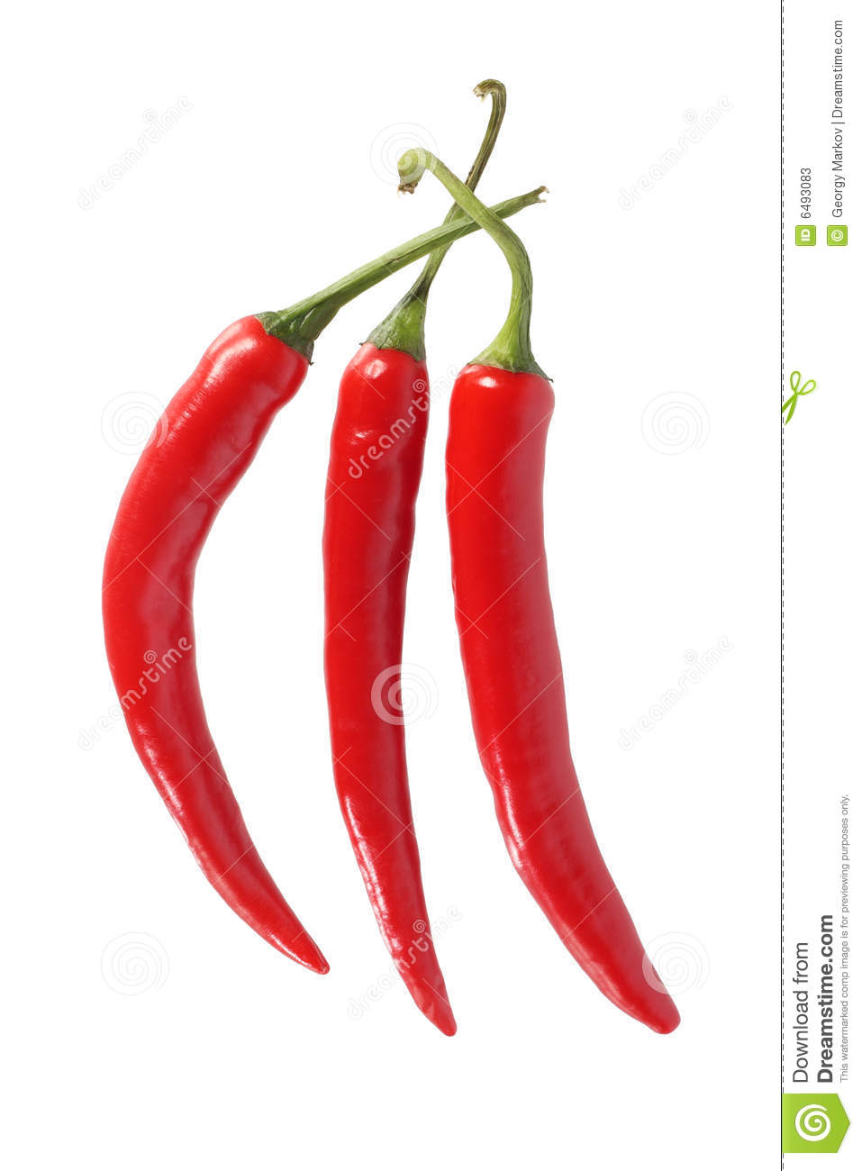 red chili peppers stock image image of chilli cuisine 6493083. Black Bedroom Furniture Sets. Home Design Ideas