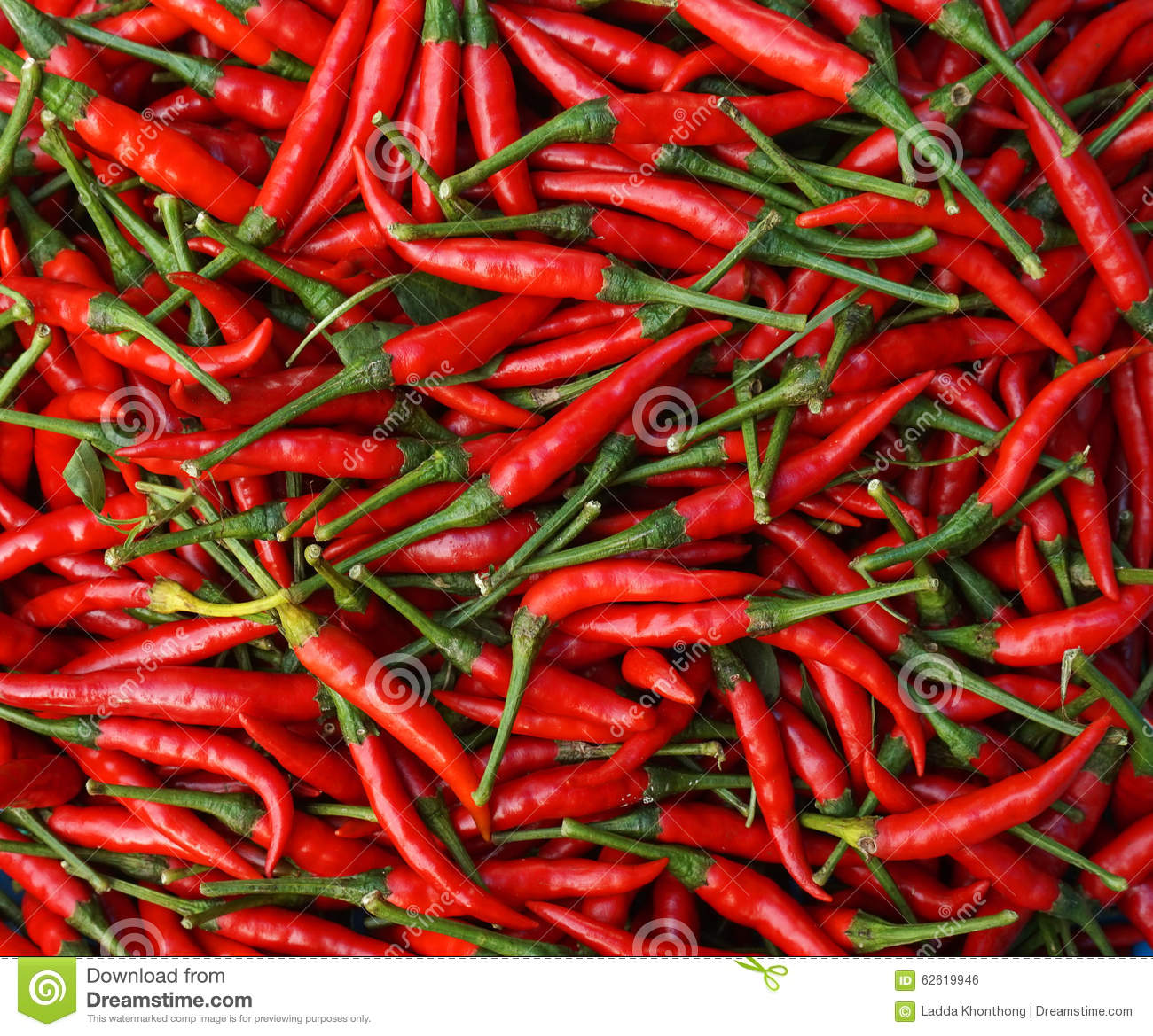 Red chill pepper stock photo image 62619946 - Dreaming about the color red ...