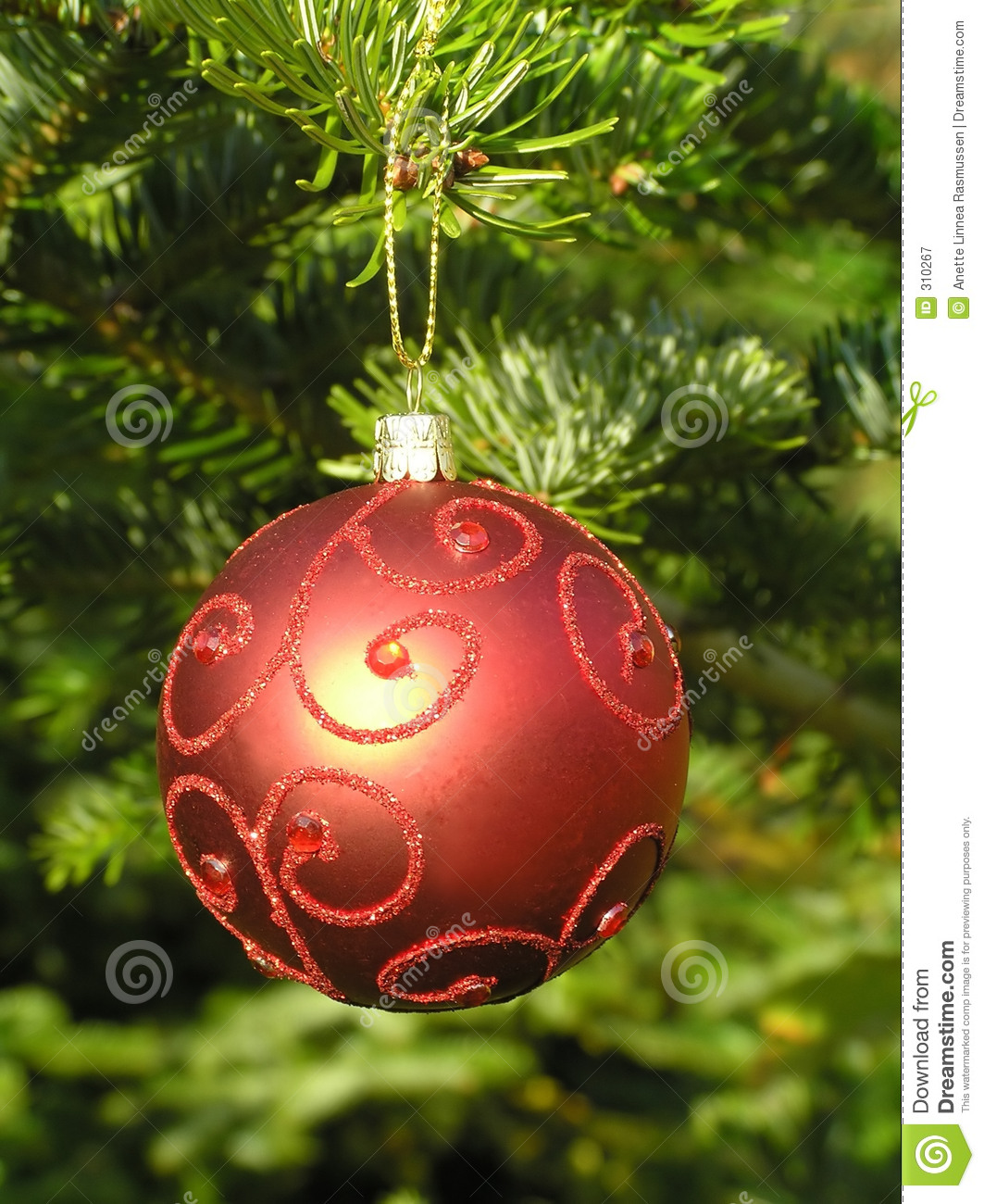 Red christmas ball hanging on a tree stock image