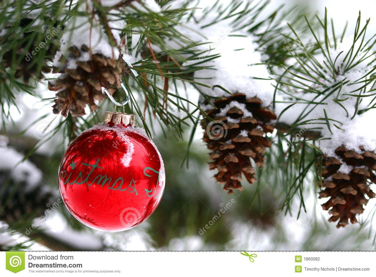 download red christmas decoration on snow covered pine tree outdoors stock photo image of