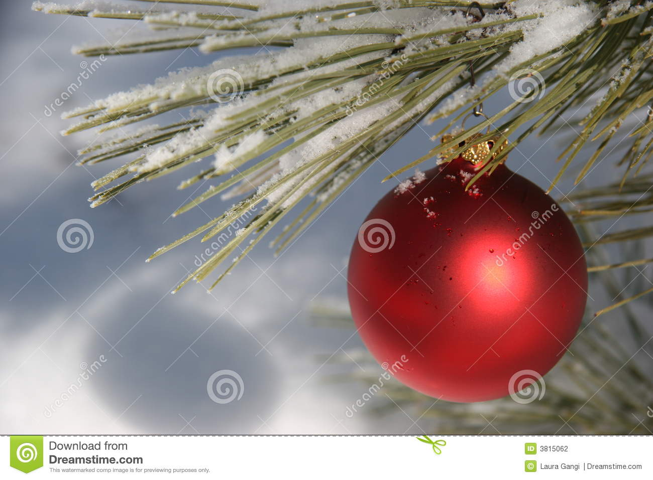 Red Christmas Ornament In Snowy Pine Tree Stock Photo