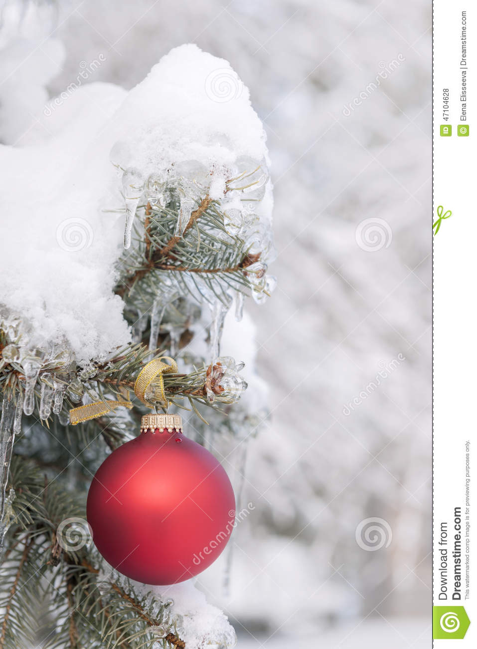 Red christmas ornament on snowy tree stock photo image for Outside hanging ornaments