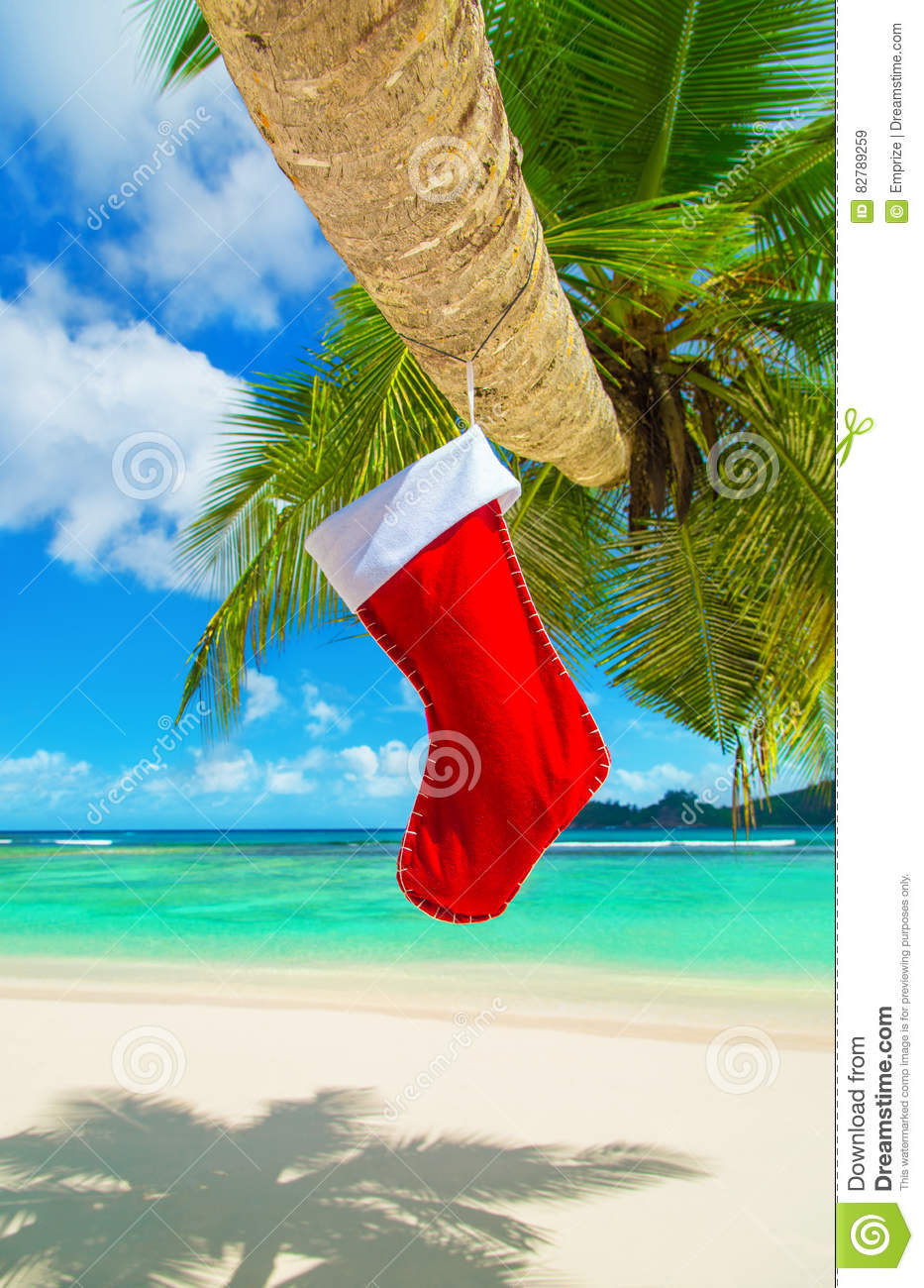 Red Christmas Sock On Palm Tree At Tropical Ocean Beach. Stock Image ...