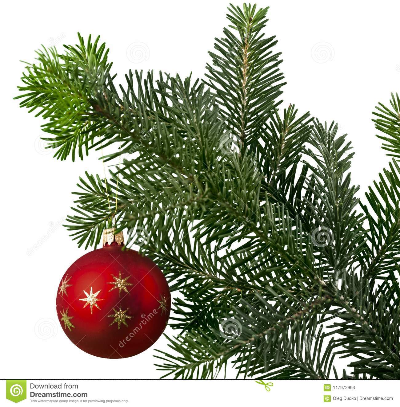 Red bauble on green christmas fir tree on white