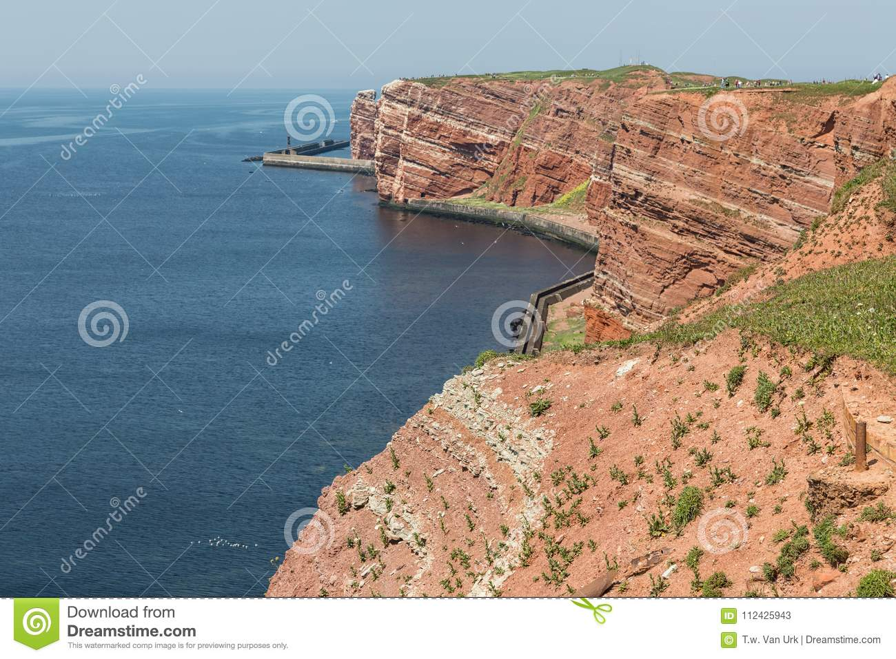 Red Cliffs of German island Helgoland with nesting seabirds