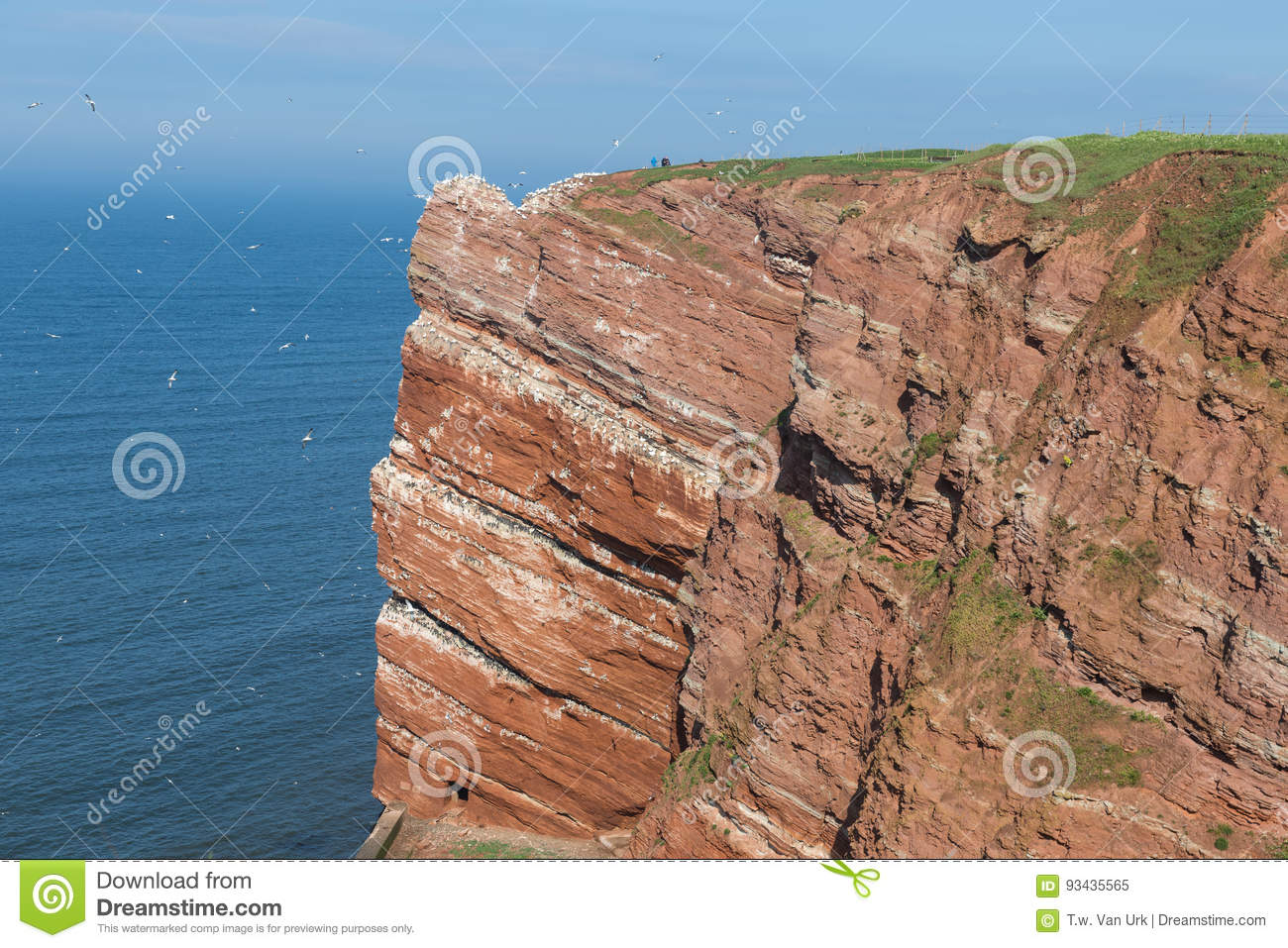 Red cliffs at German island Helgoland