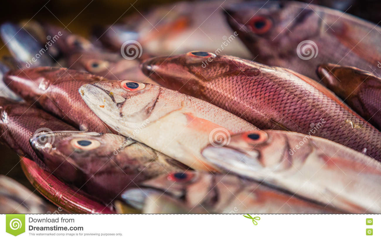 Red Colored Fish At Marketplace Stock Photo - Image of healthy ...