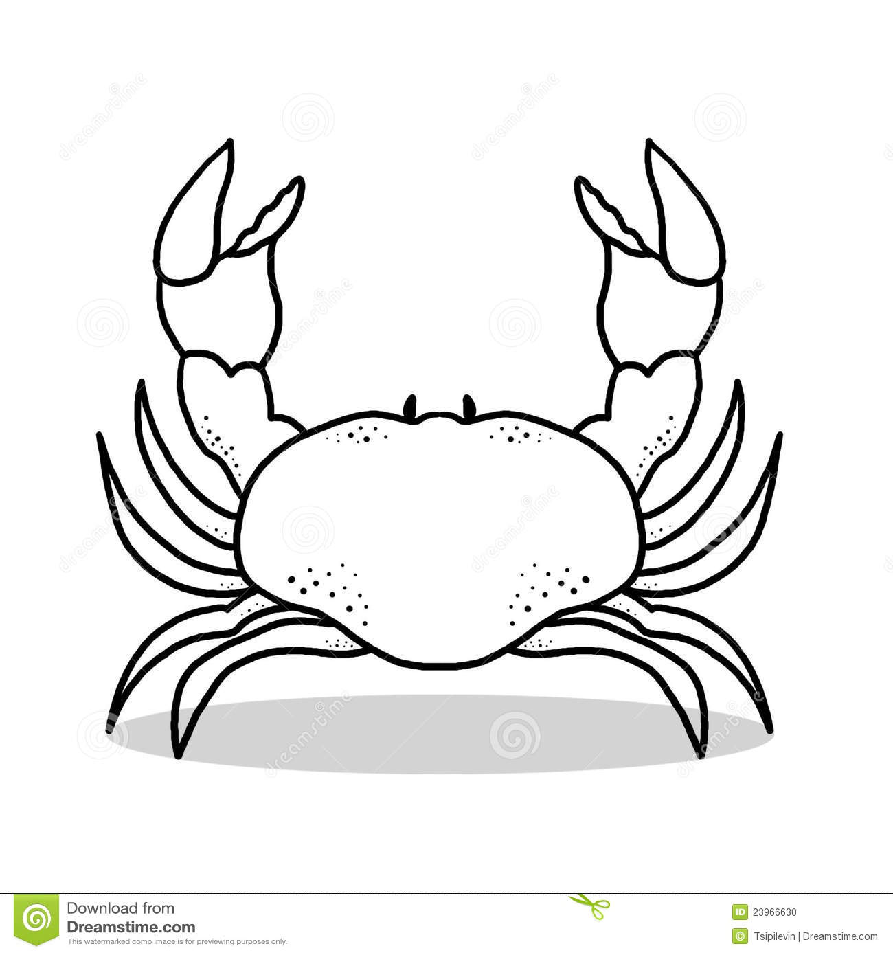 crab outline illustration stock photo image 23966630