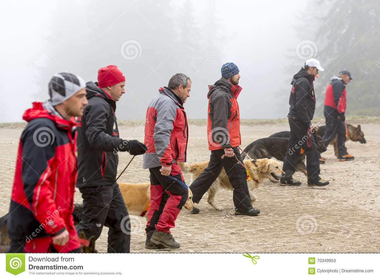 Search And Rescue Dog Training Volunteers