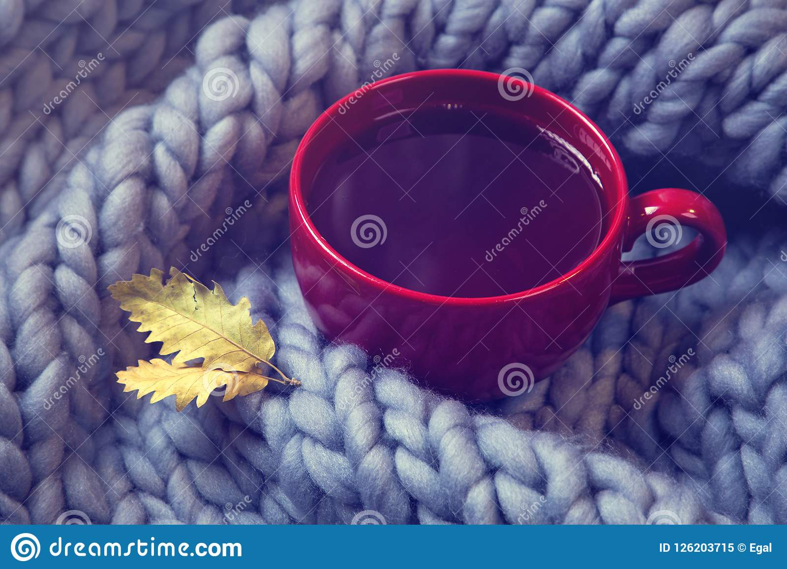Download Red cup of tea stock image. Image of beverage, interior - 126203715