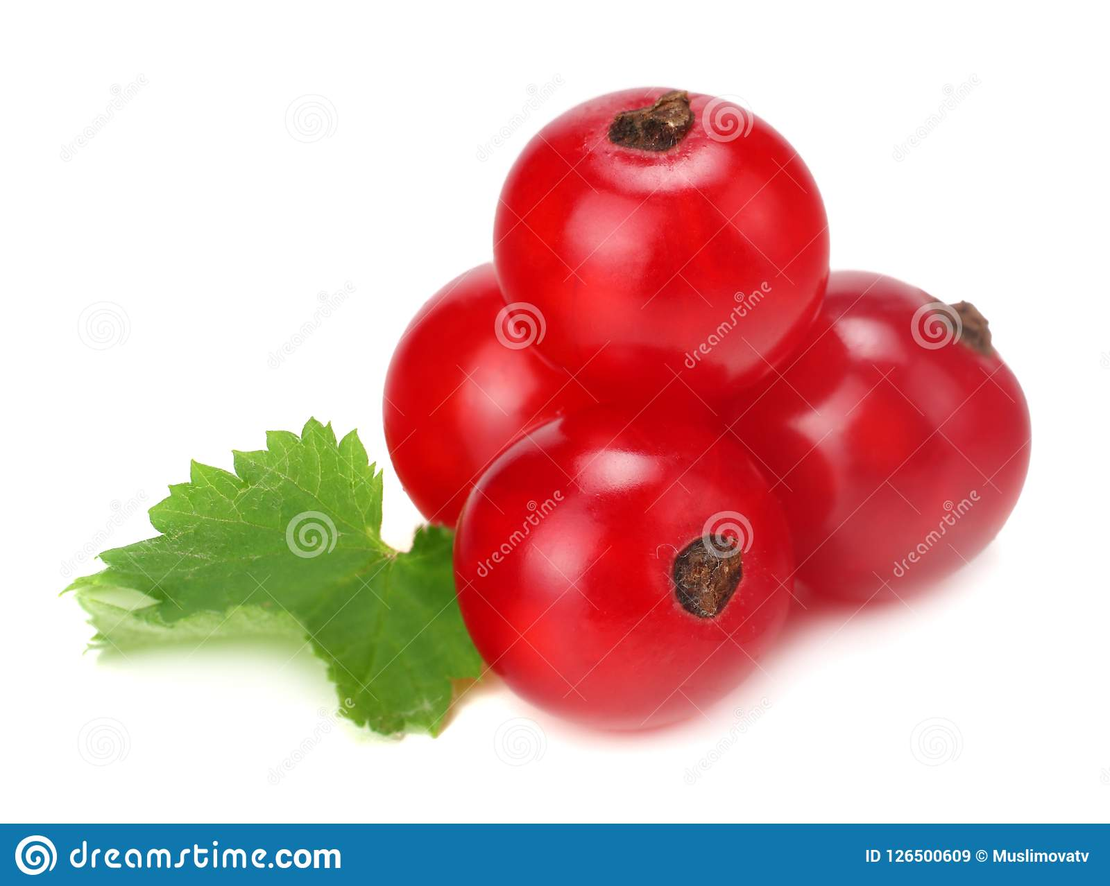red currant with green leaf isolated on a white background. macro. healthy food