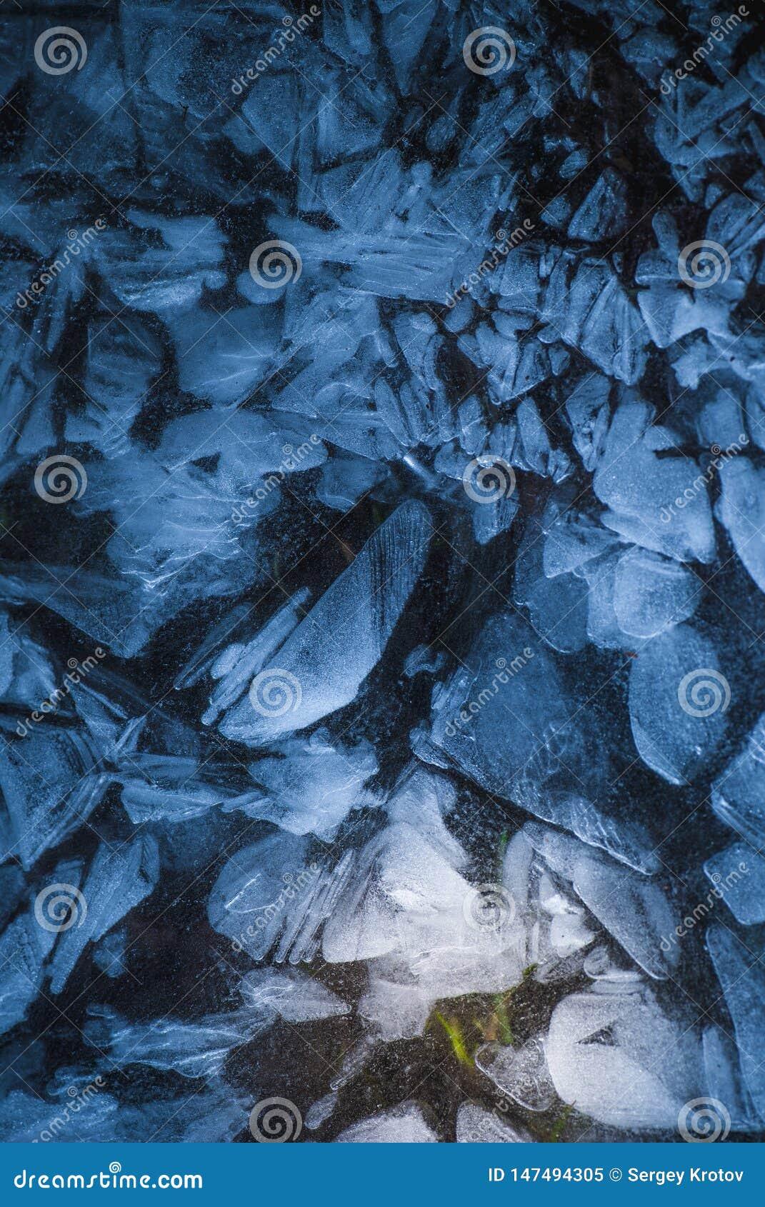 Red de grietas en la capa congelada sólida gruesa de hielo con la luz brillante y la hierba verde en el profundo