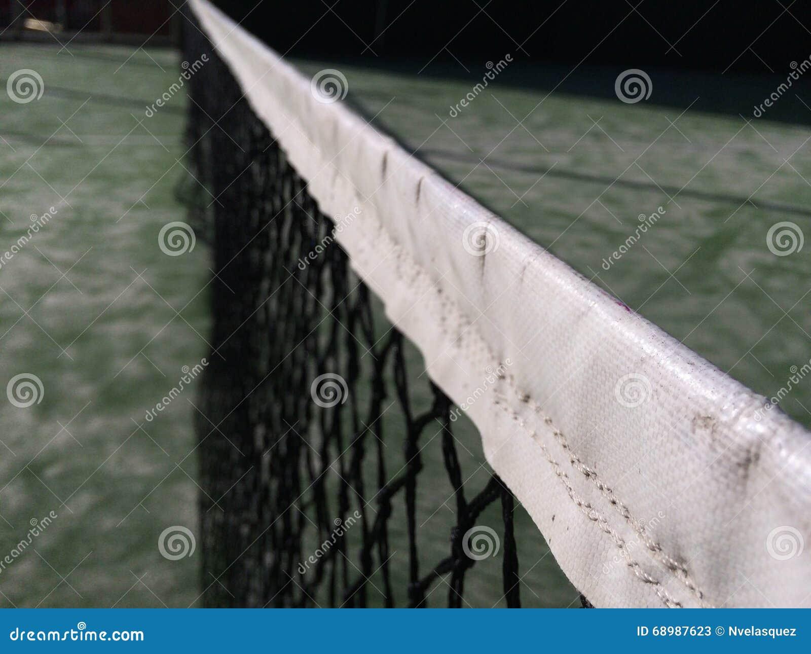 Red del tenis de la paleta