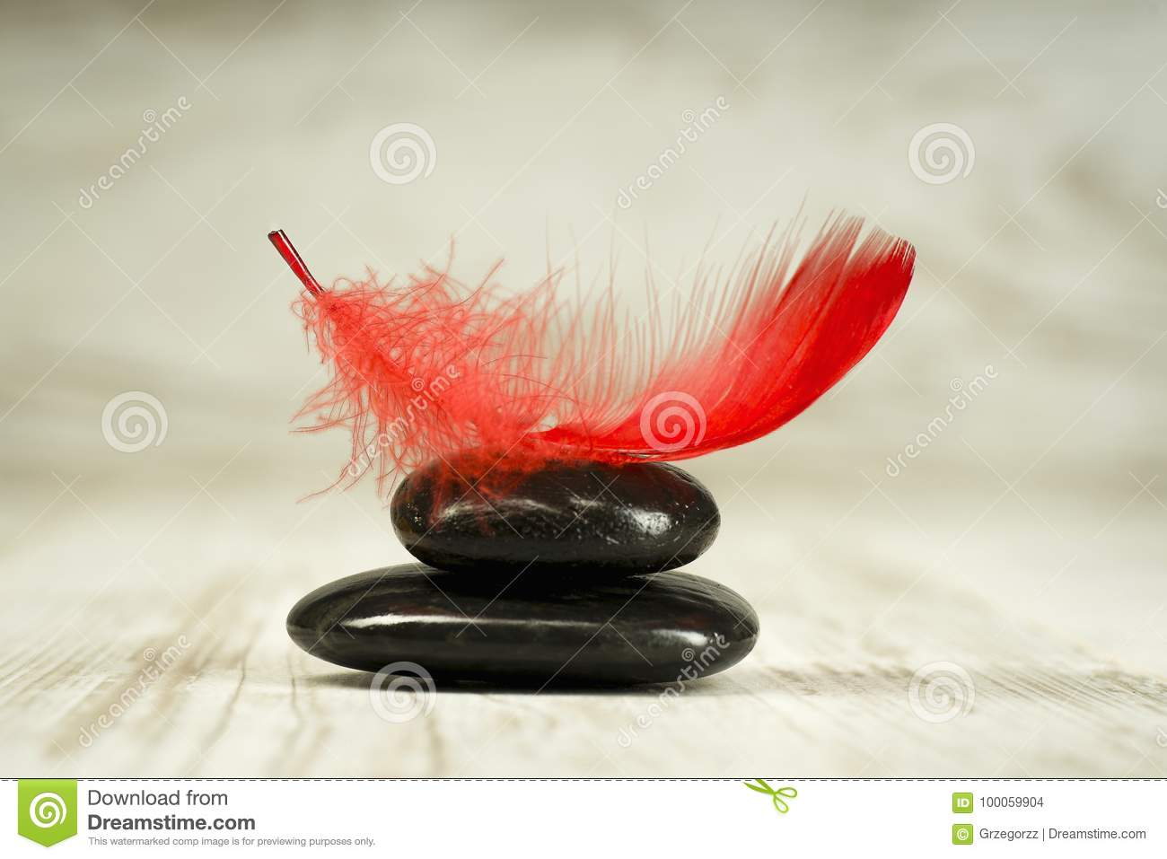 Red feather on black stones