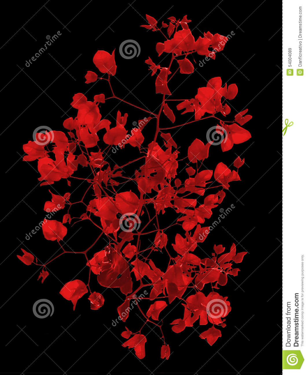 red floral background stock image image of flowers