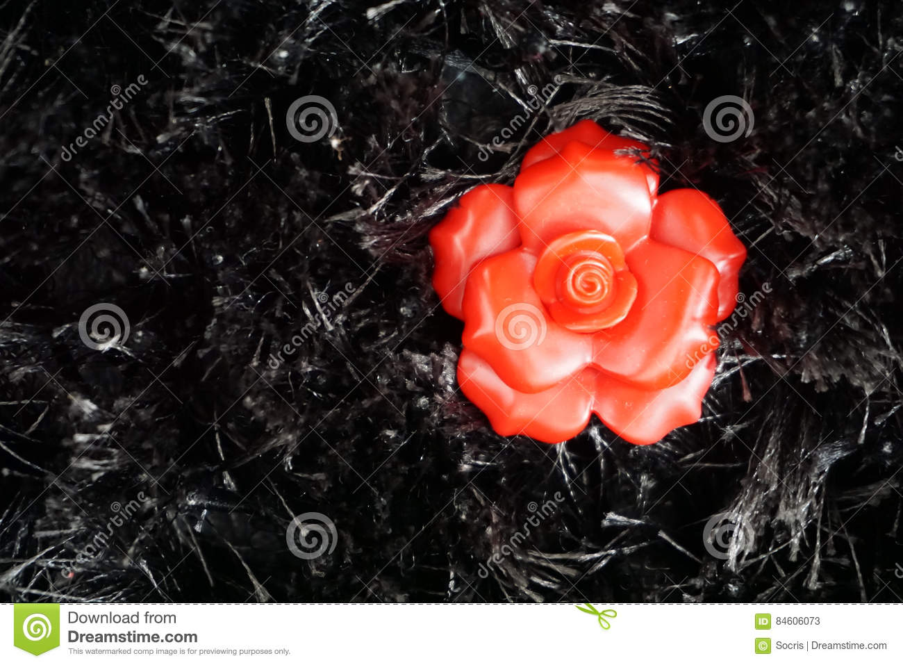 Red Flower On Black Background Stock Image Image Of