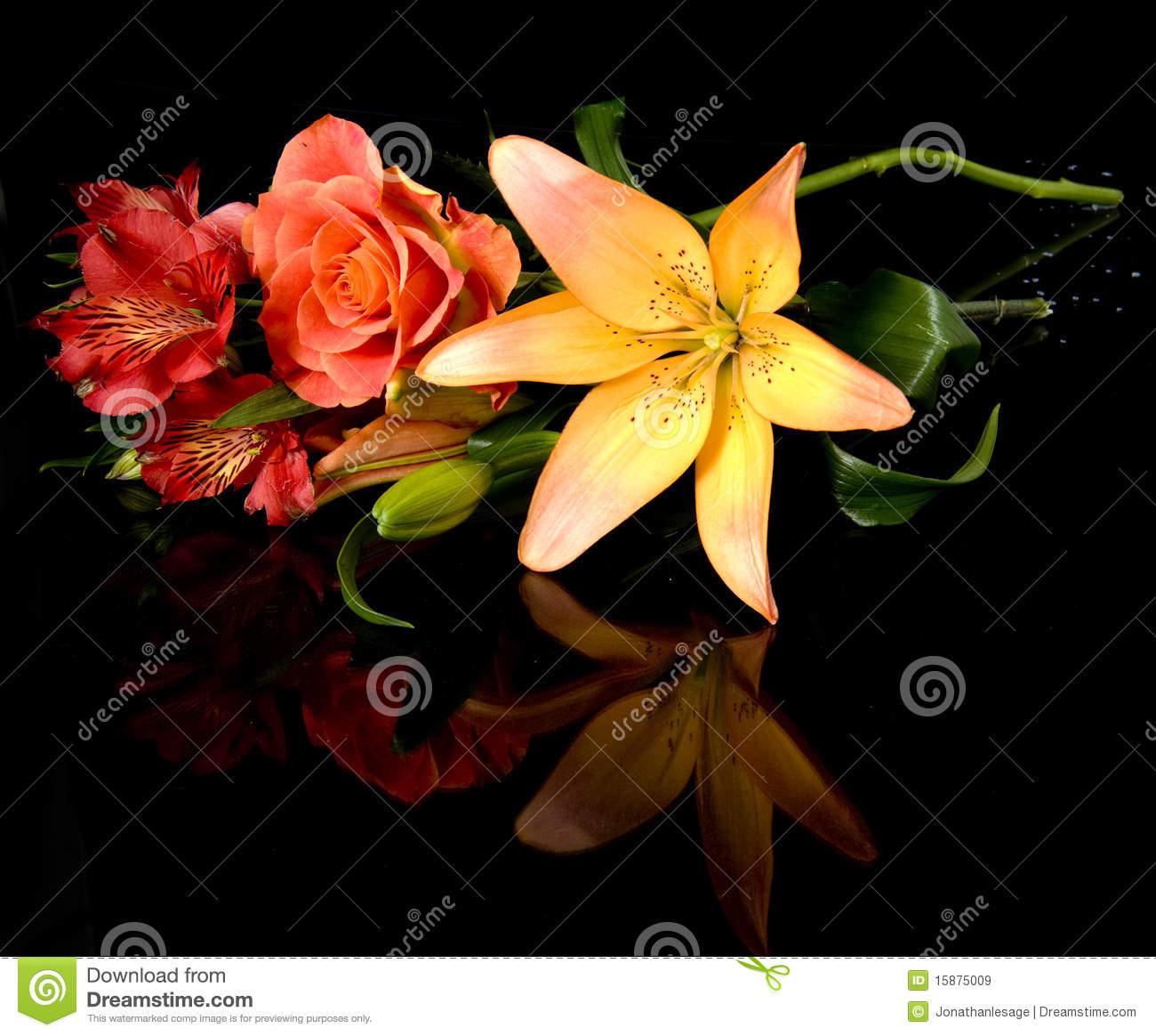 Red Flower Fleur Rouge Lys Buch Bouquet Stock Image Image Of