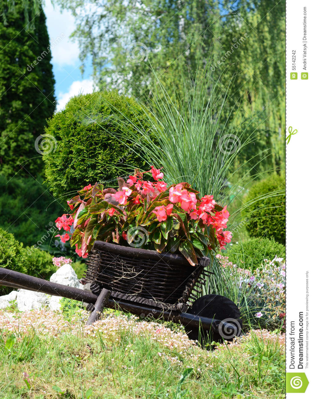 Red Flowers In The Garden On A Small Decorative Wooden Wagon Stock ...