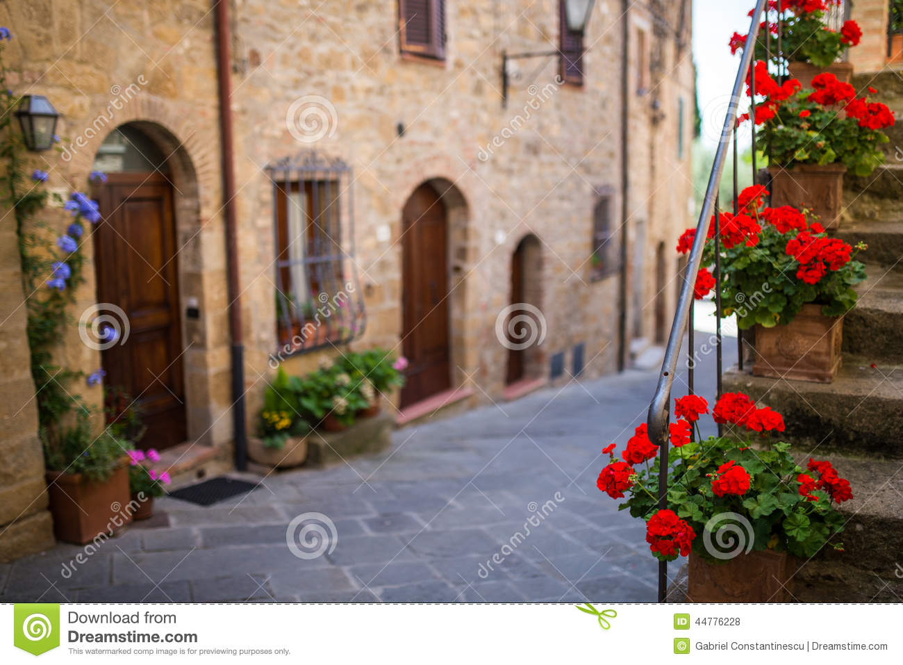 Red flowers in Tuscany, Italy