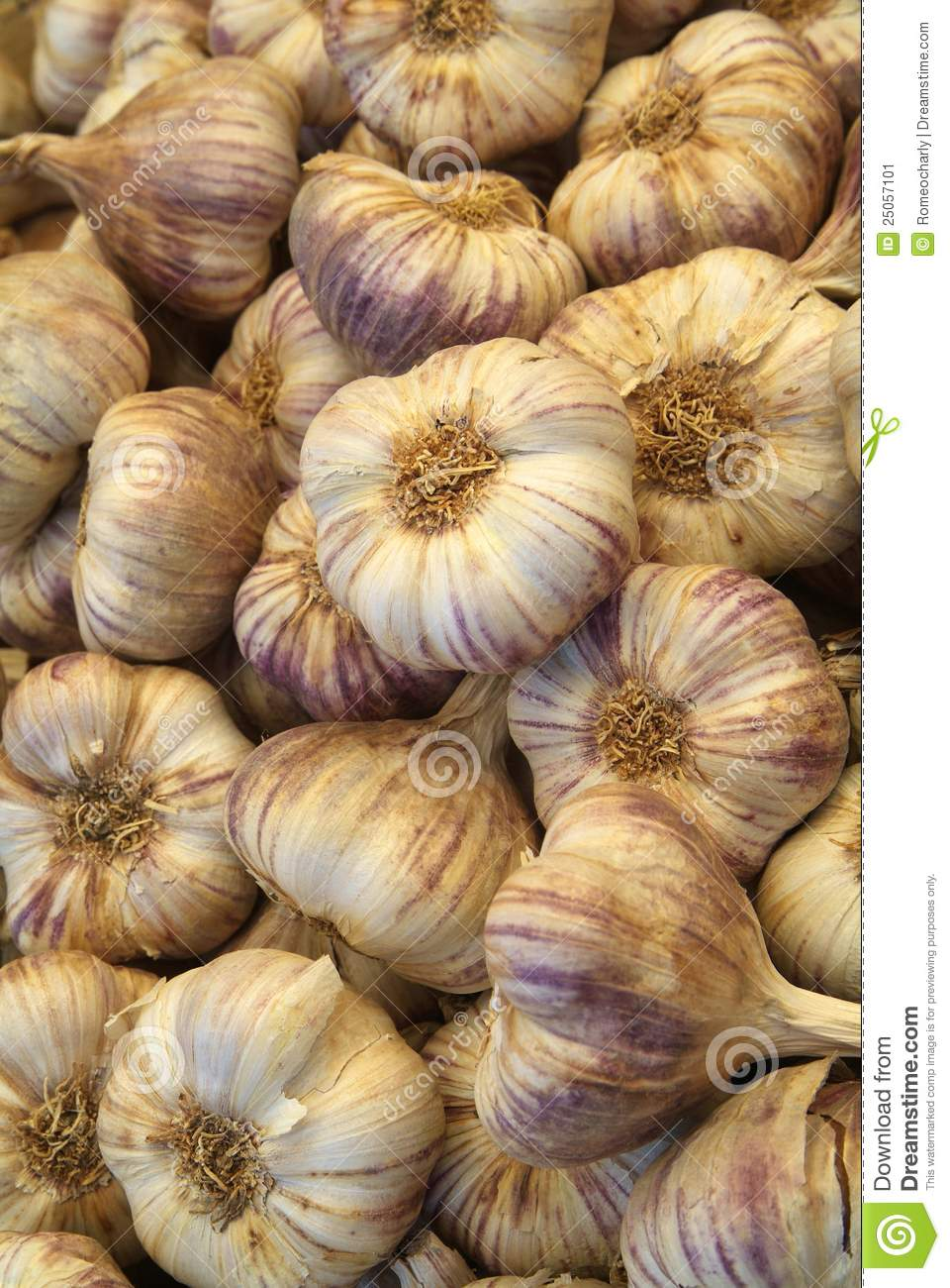 Red garlic