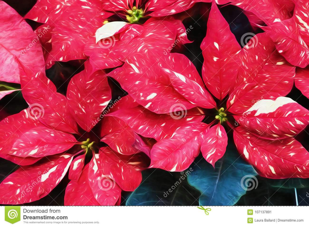 Red glitter poinsettia flower stock image image of textured leaf download red glitter poinsettia flower stock image image of textured leaf 107137891 izmirmasajfo